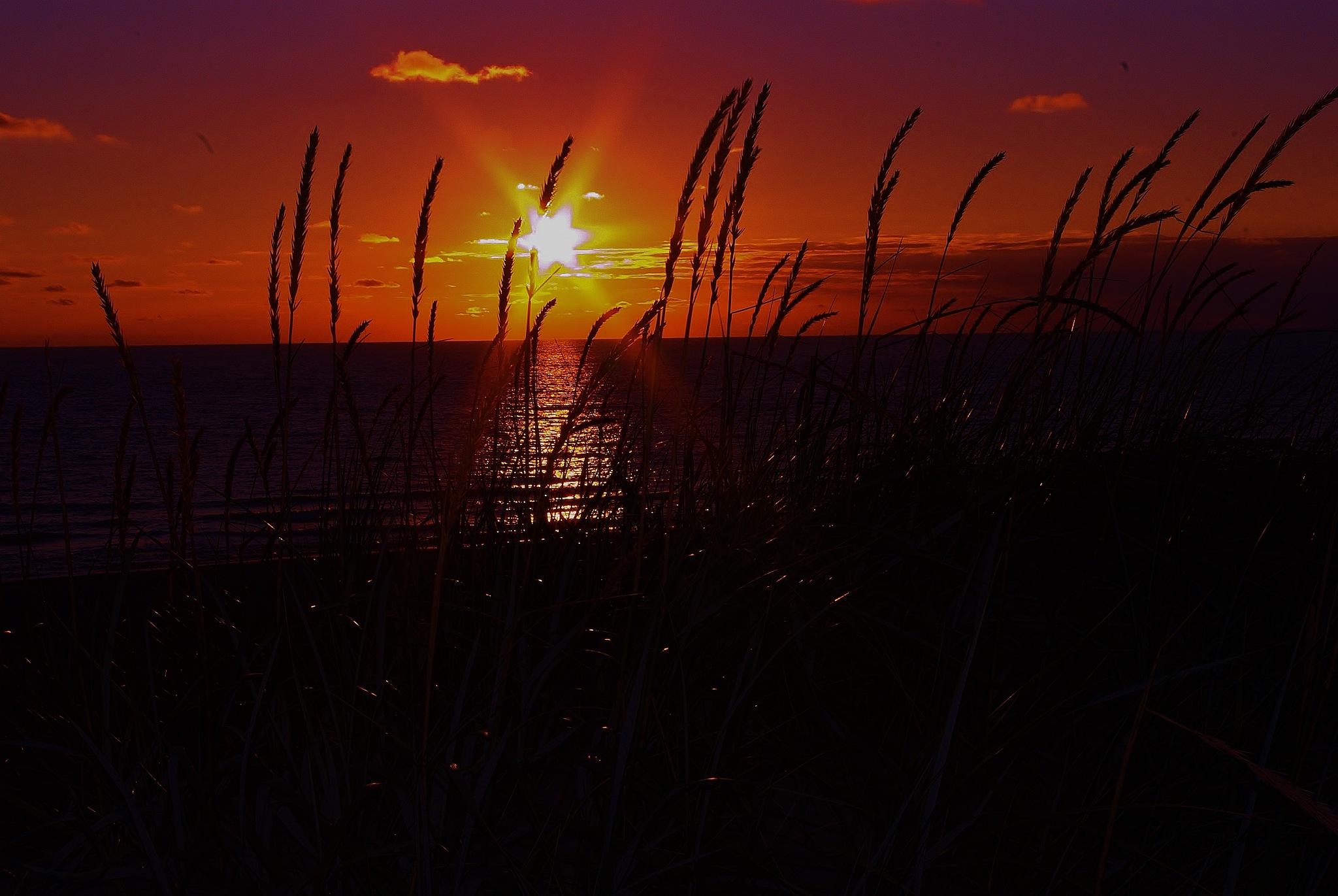 solnedgang ved vesterhavet by papp
