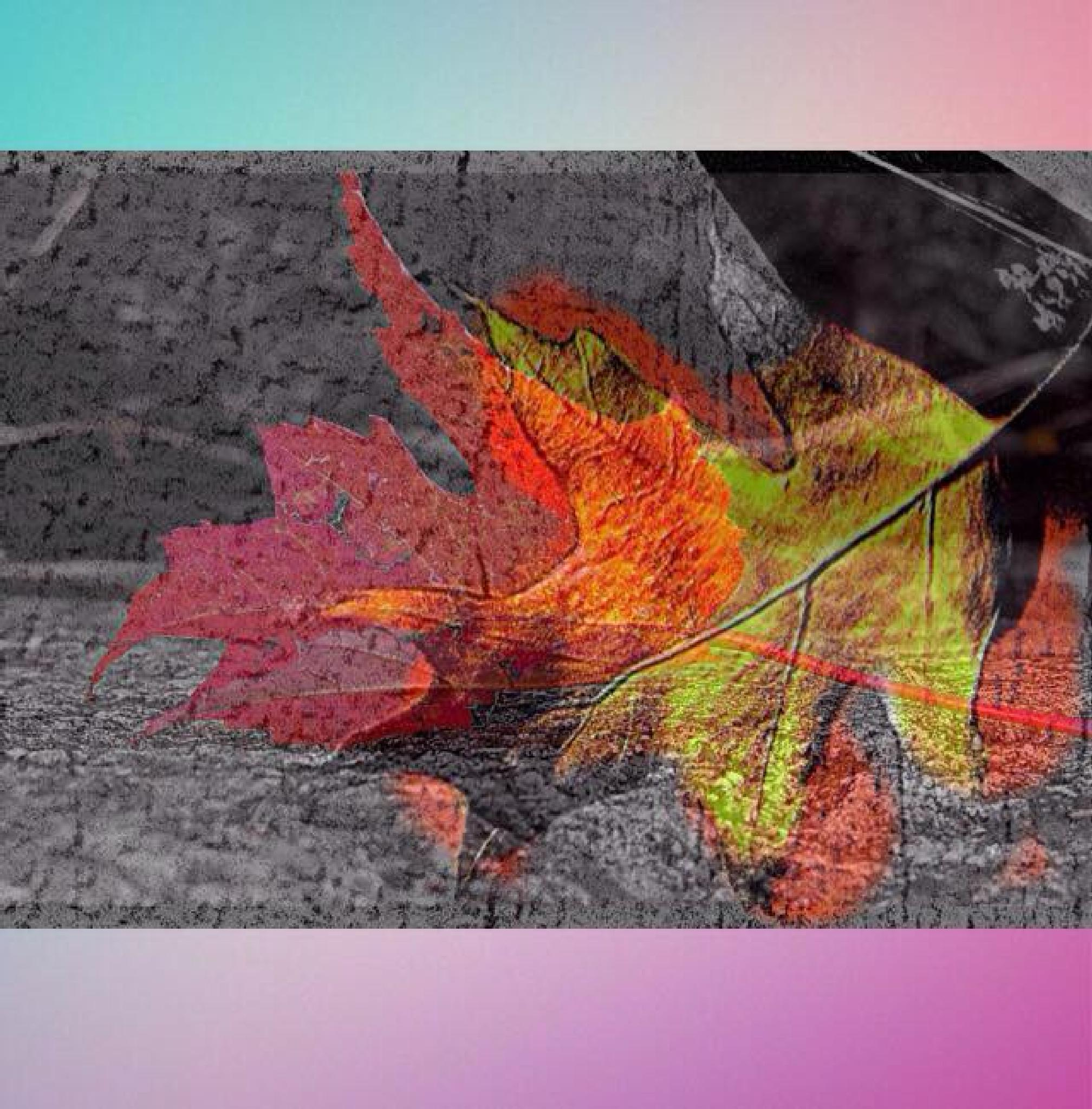 Photo in Abstract #abstract #digital #composite