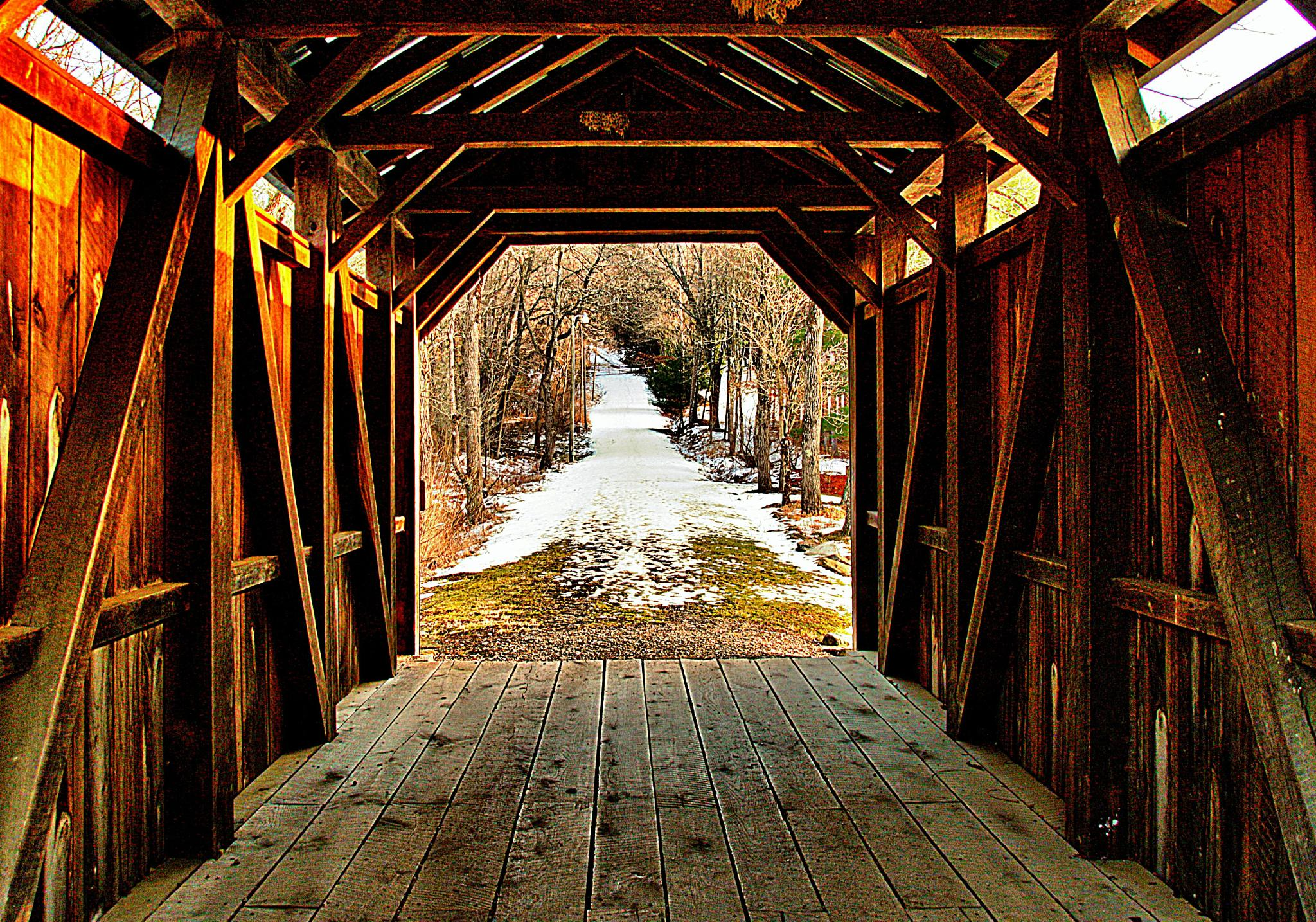 Bridge to everywhere by pennieawhite