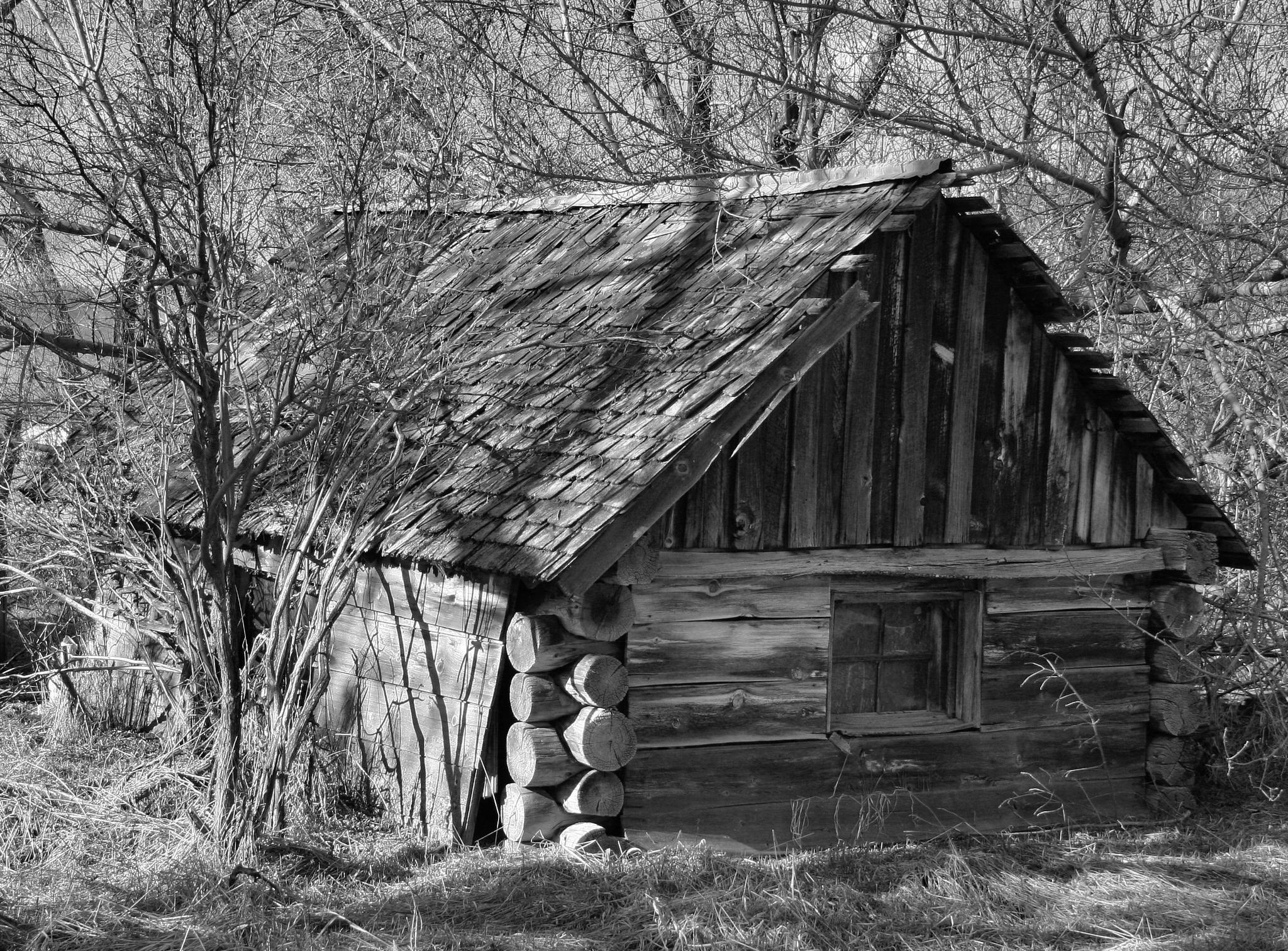 Ye Old Log House by Rodney Tietjen