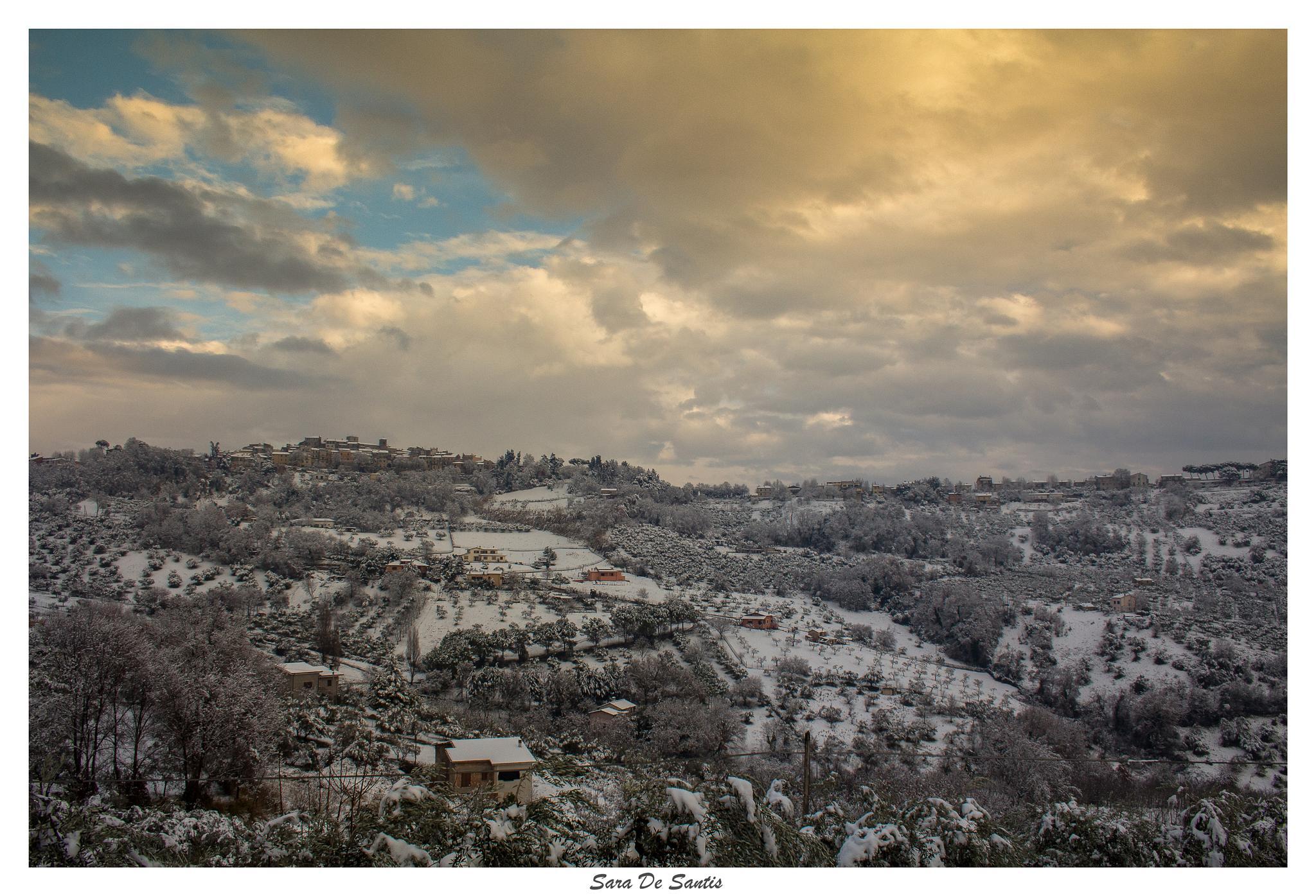 the snow by sara de santis