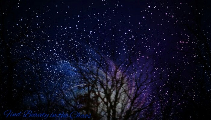Stars and Trees by Chaotic Beauty