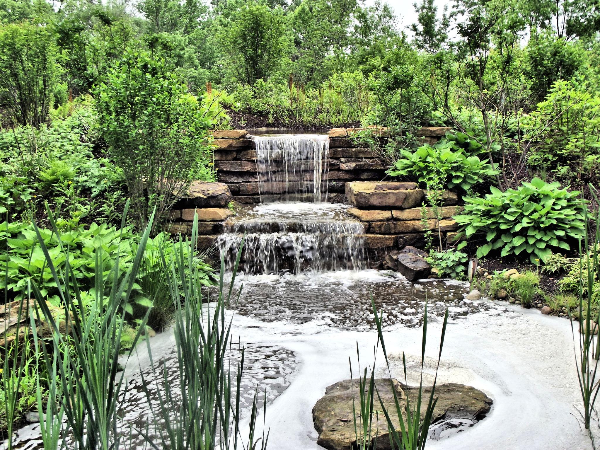 Beautiful Little Waterfall by Jennifer Asher