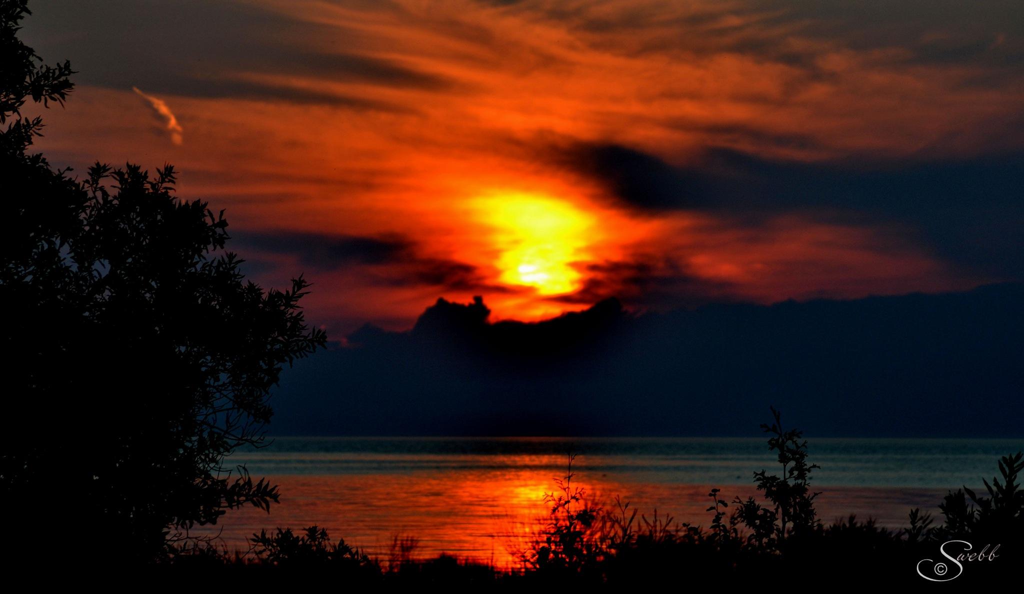 Darkness by Steve Webb