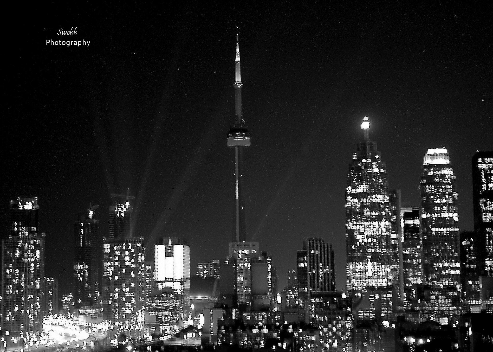 Toronto At Night by Steve Webb