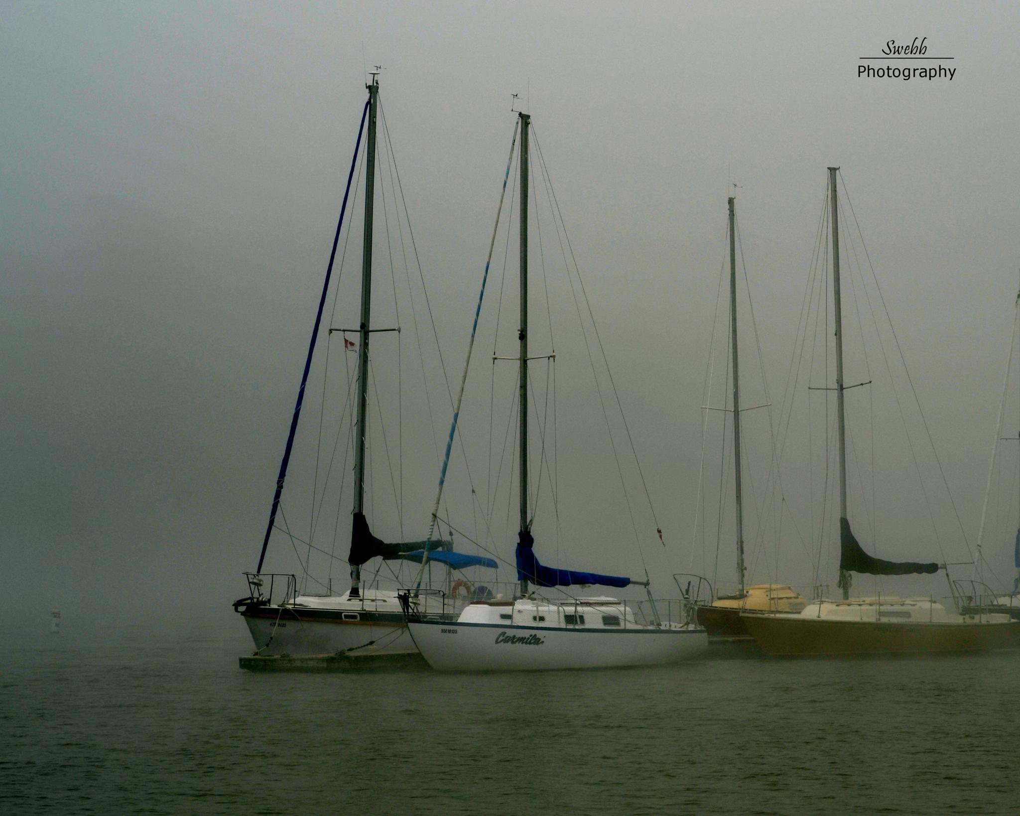 Fog's Coming by Steve Webb