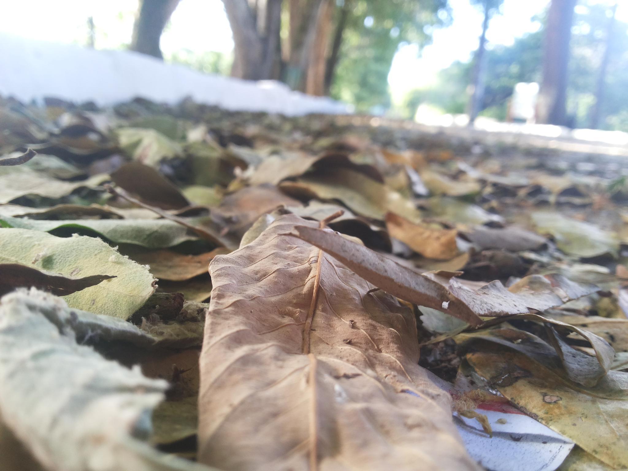 Photo in Landscape #nature amador foco