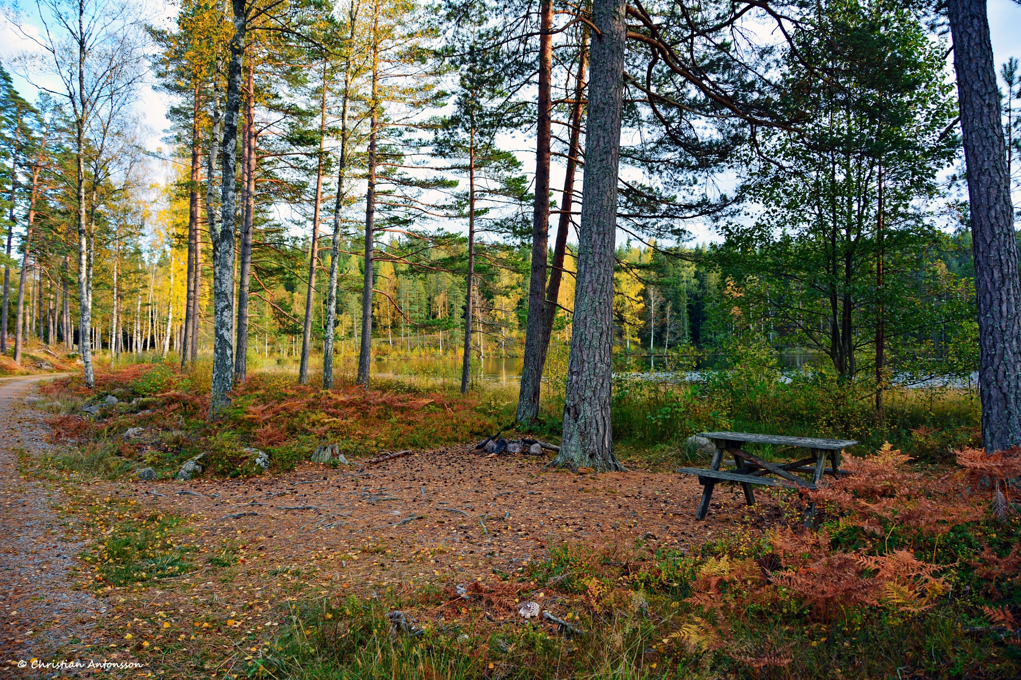 Autumn in Sweden by christian.antonsson