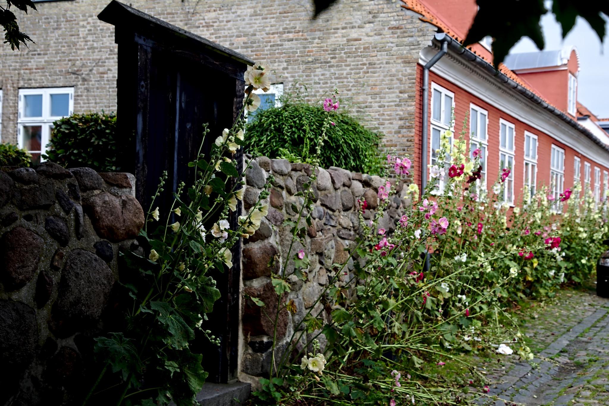 Street veiw from Ronne by Anders Weinberg