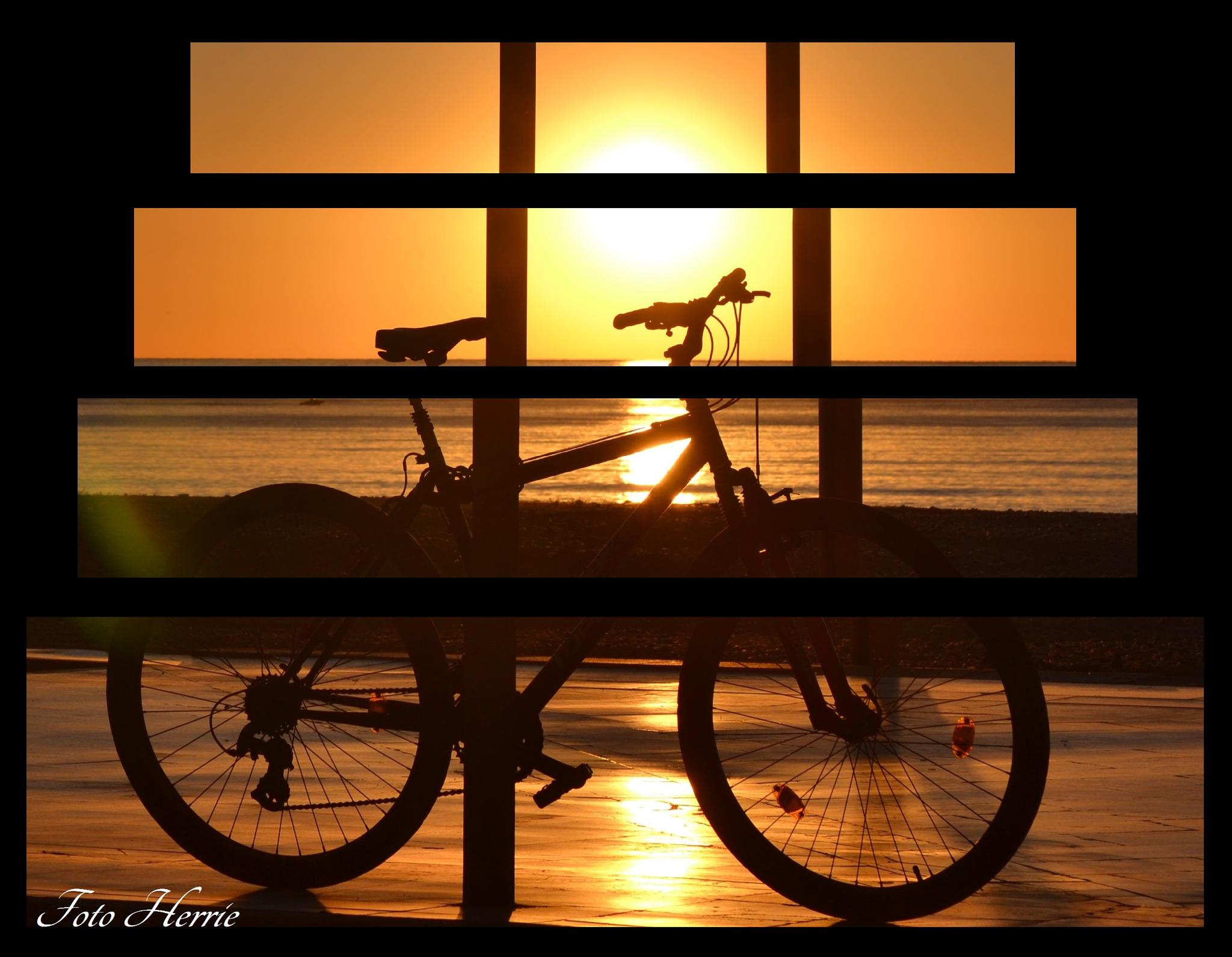 Sunset Bicycle by photoherrieschnoink