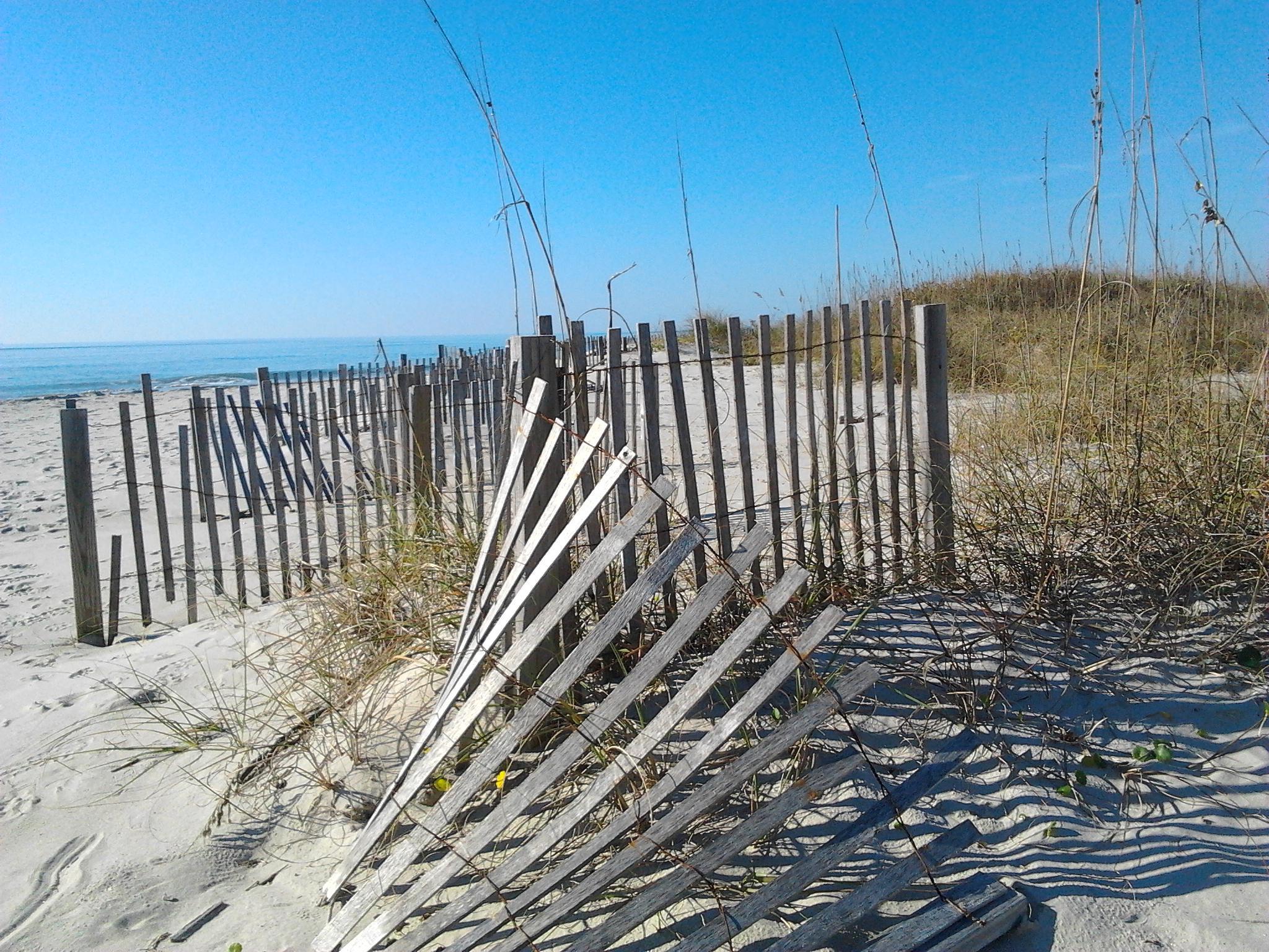 Fences by elizabeth.bragg.90