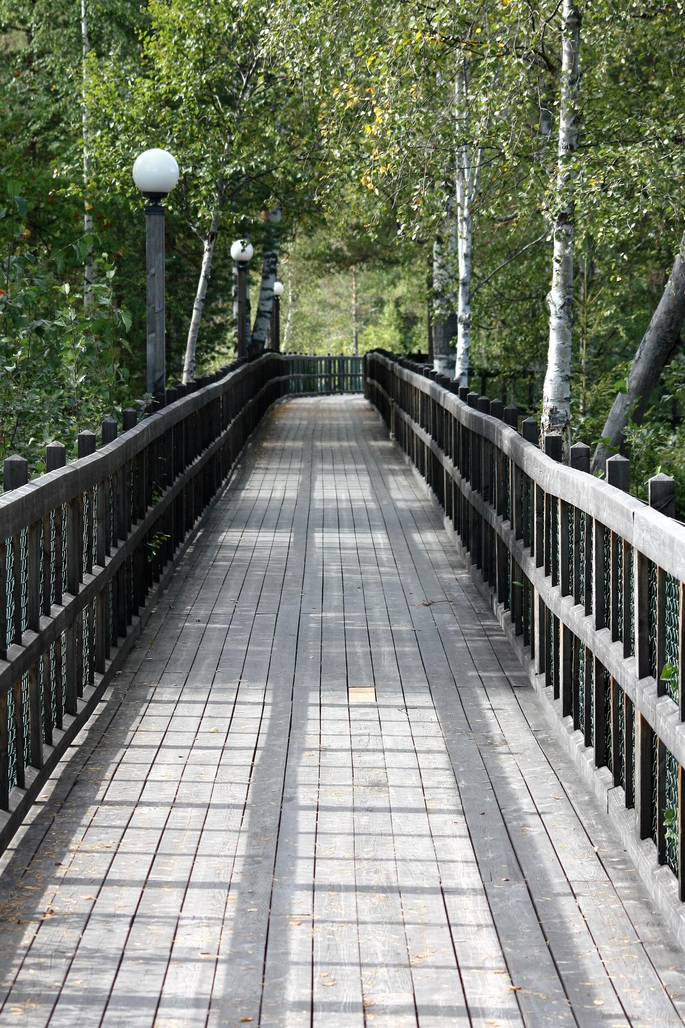 Bridge by karinbelinki