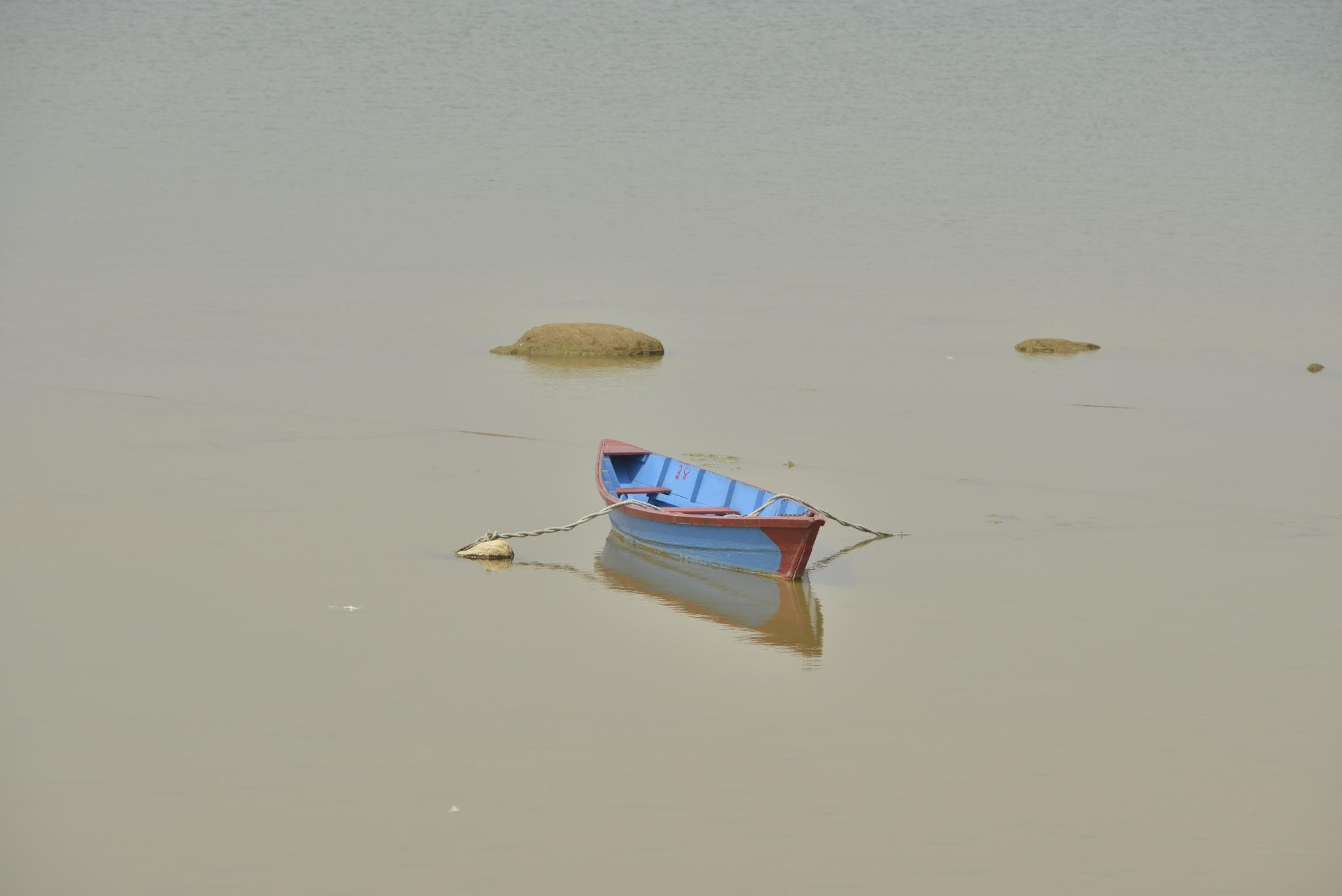 Alone by Massoud Memar
