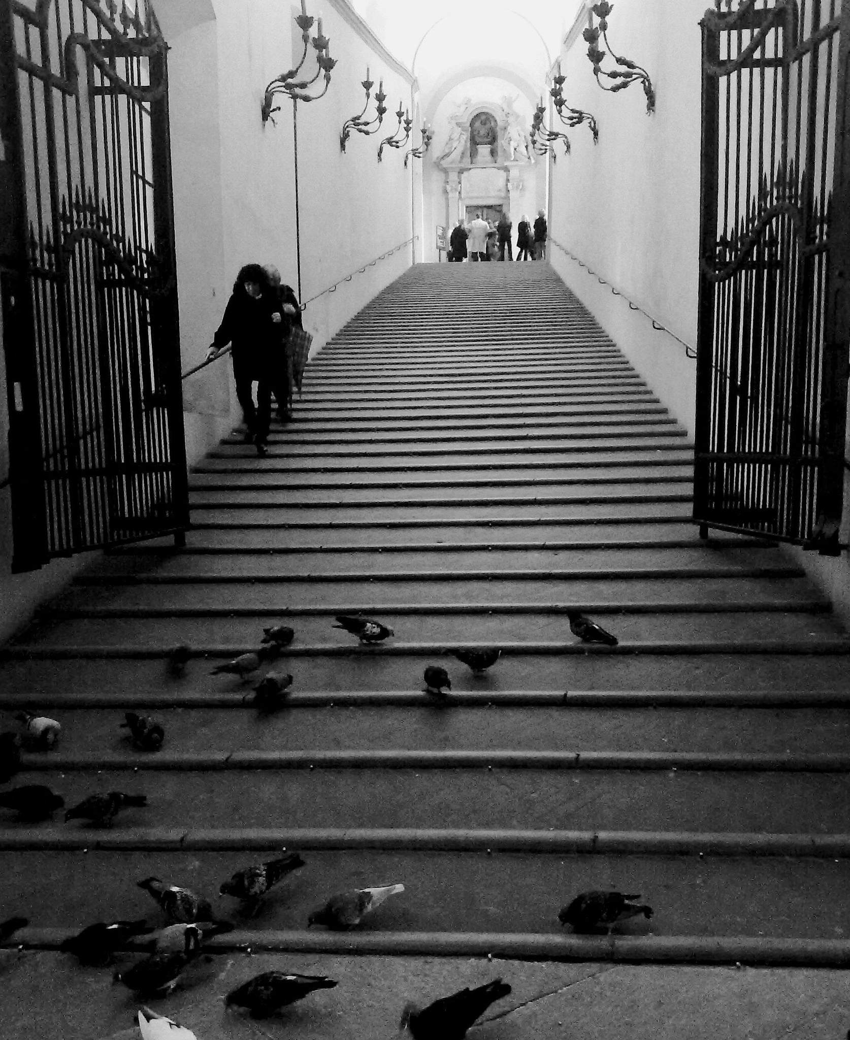 Stairs with pigeons by carmenlargo13