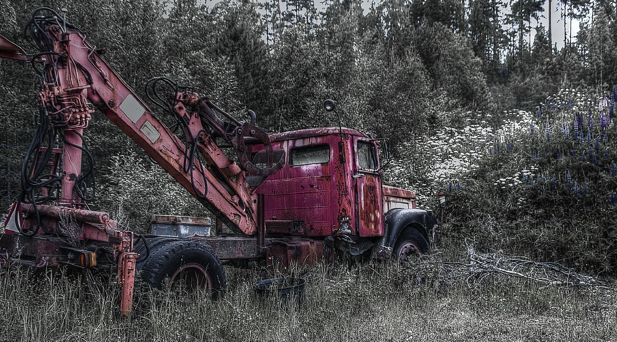 Rusty Truck by Richard Taimalie