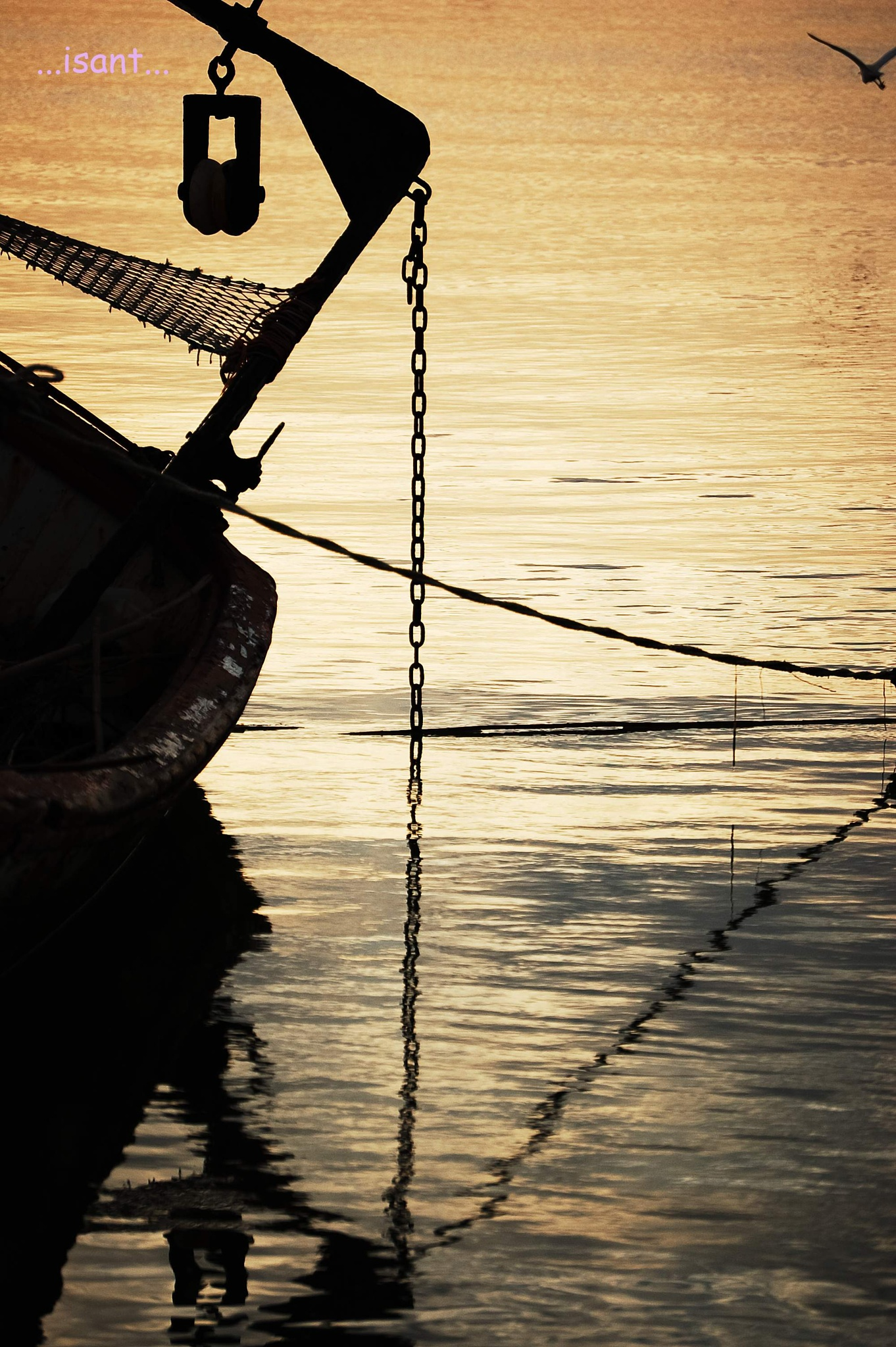 Sea by Pablo Pazos