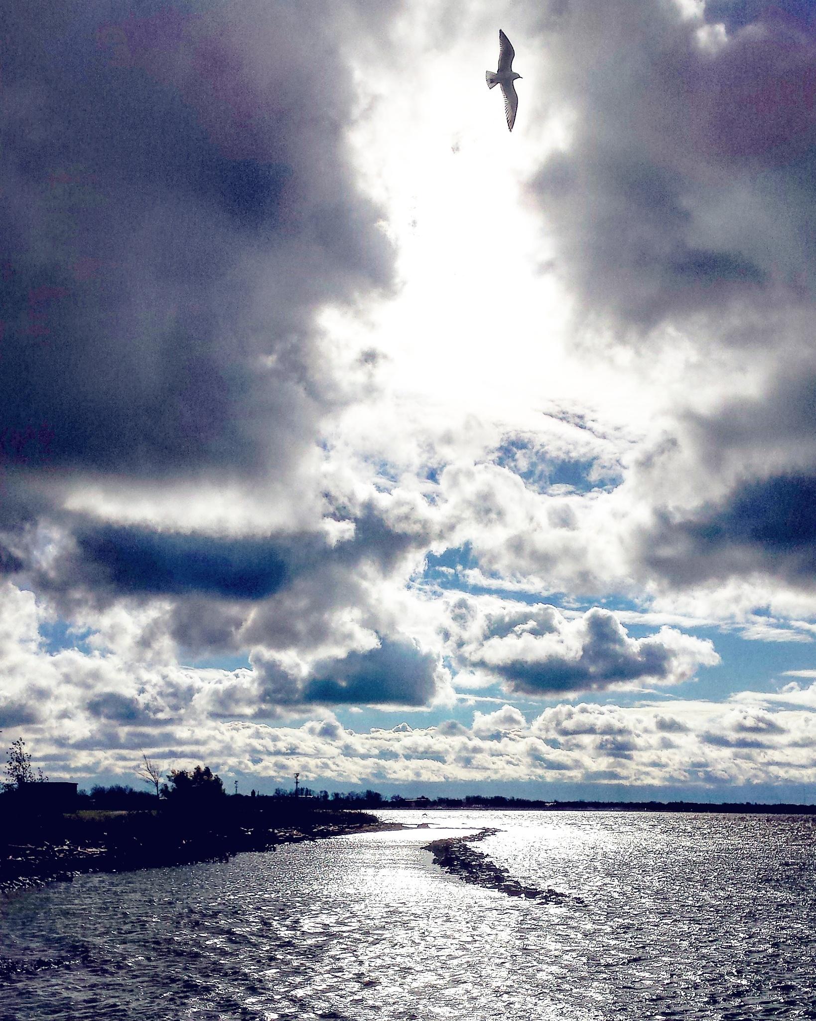 Niagara River morning by mzwack1
