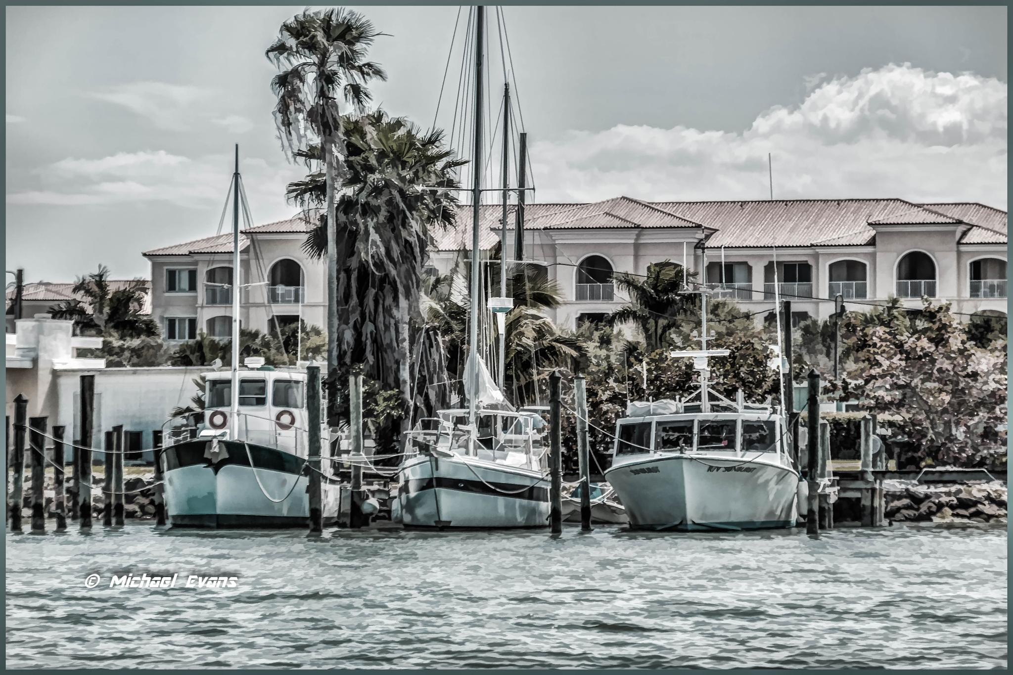 """""""Florida Living by the Sea"""" by redstag"""