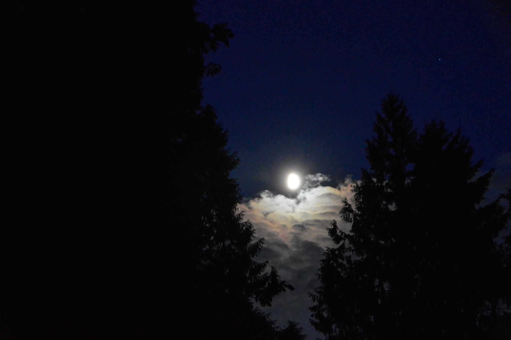 Moonlight Reflection On The Clouds by jan.noblitt