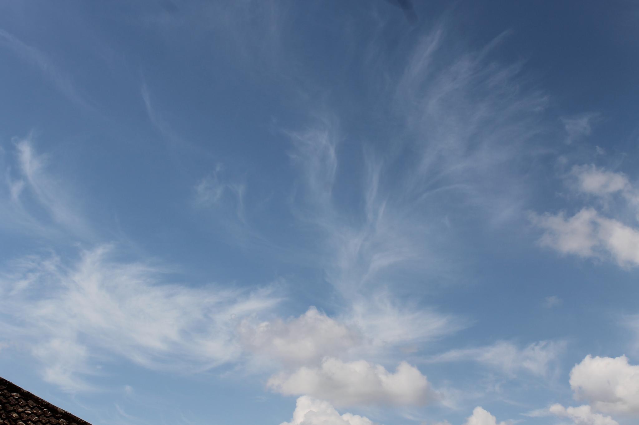 Streaking Sky by Joe Lane