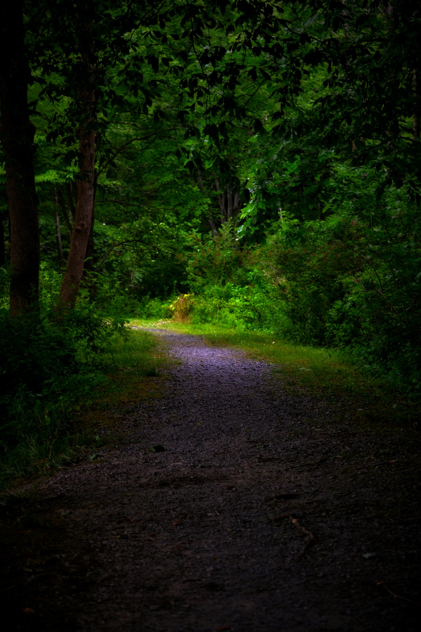a..path:-) by angeliki