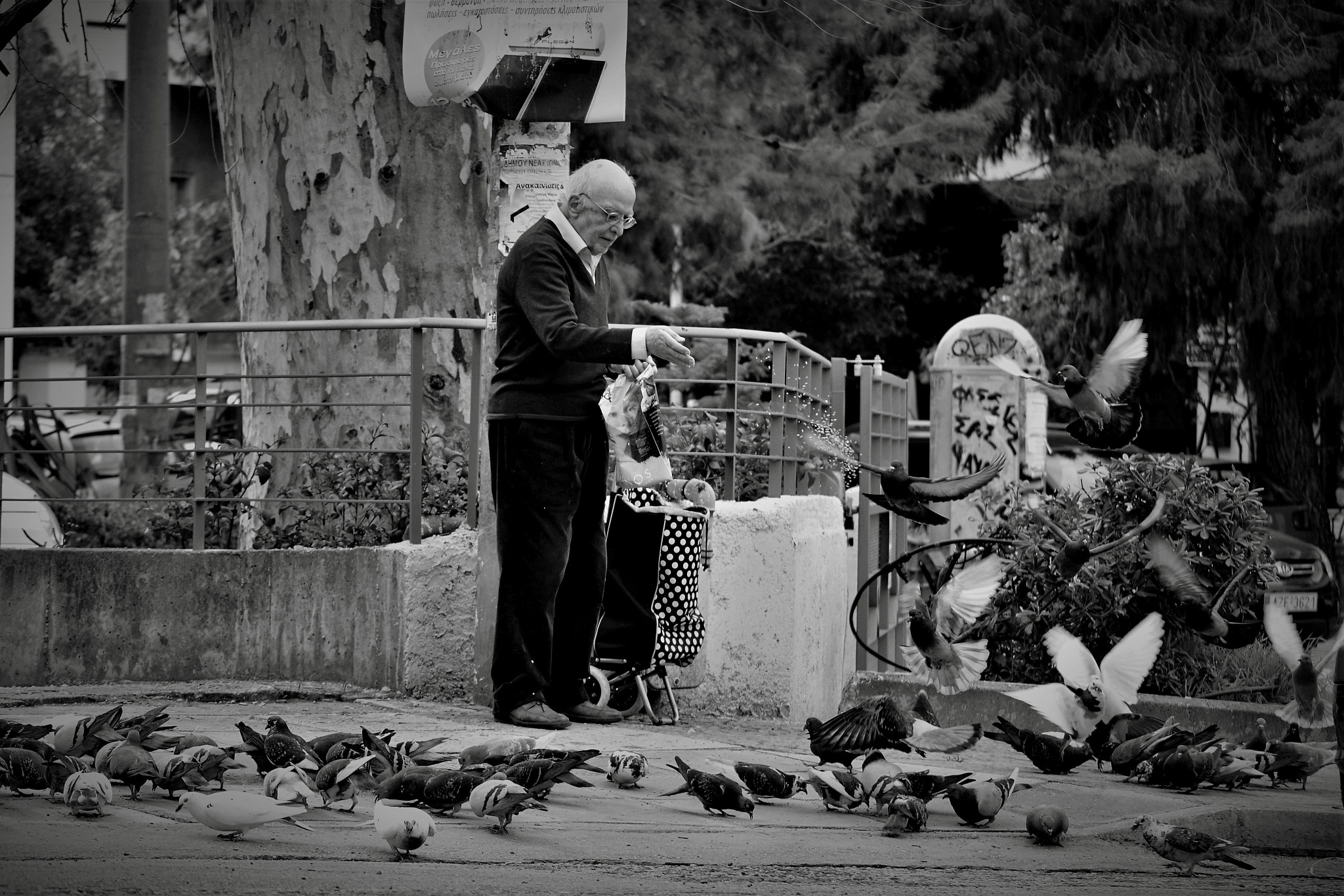..feed the birds :-) by angeliki