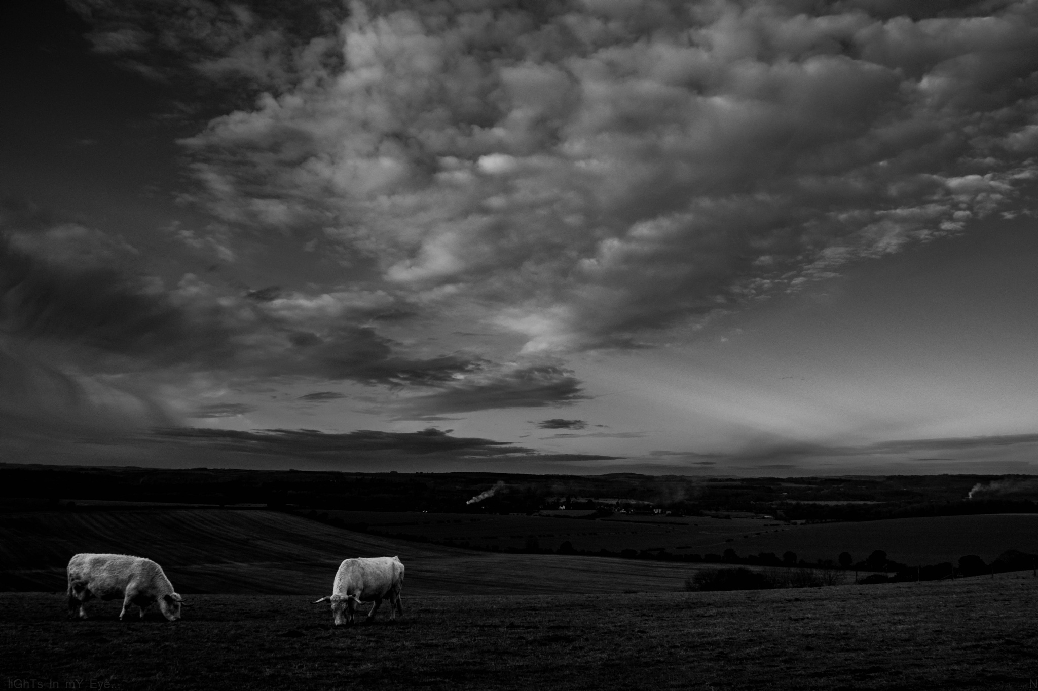 hill view.. by neil.hickman1