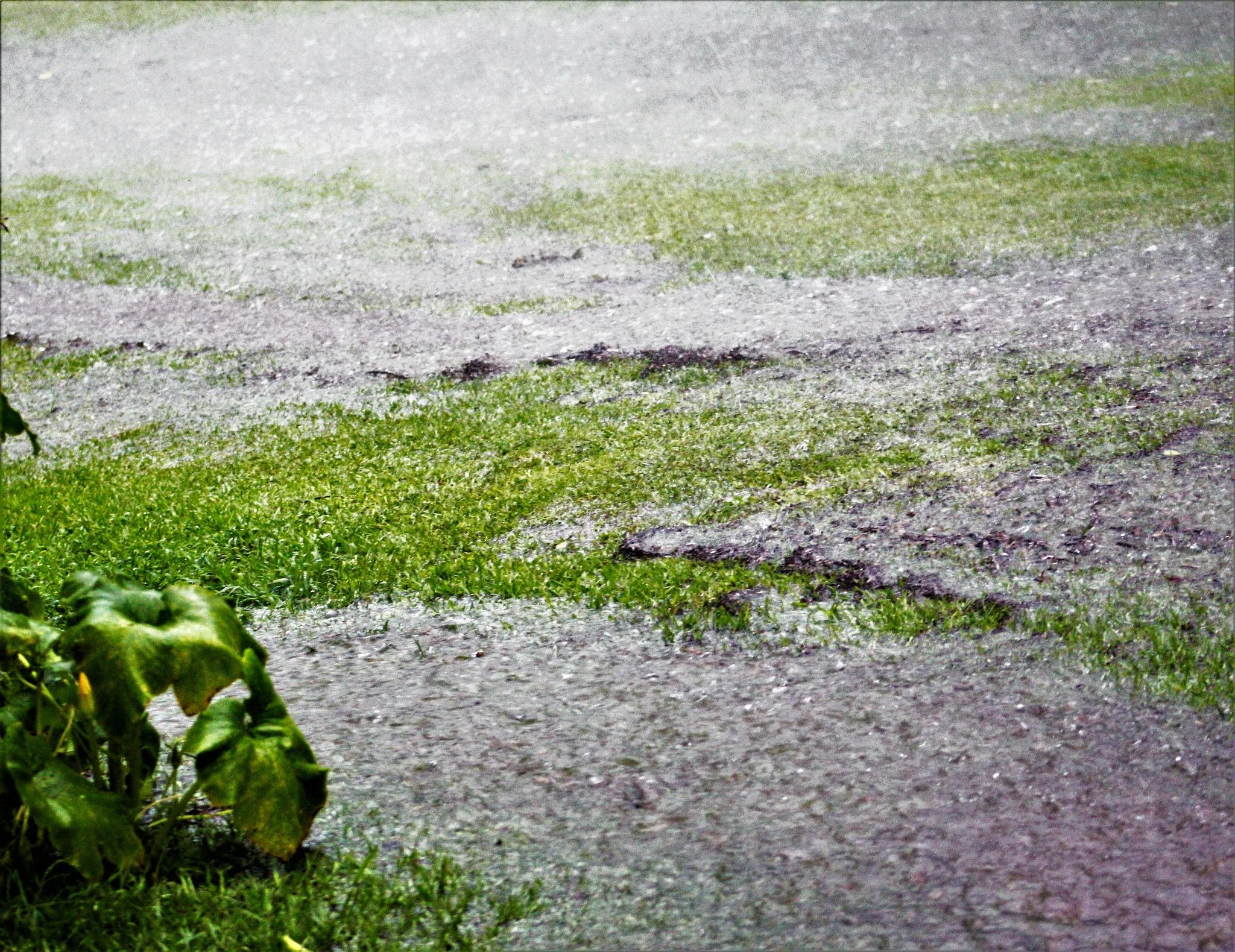 Flash Flood by cindi.lucas.7