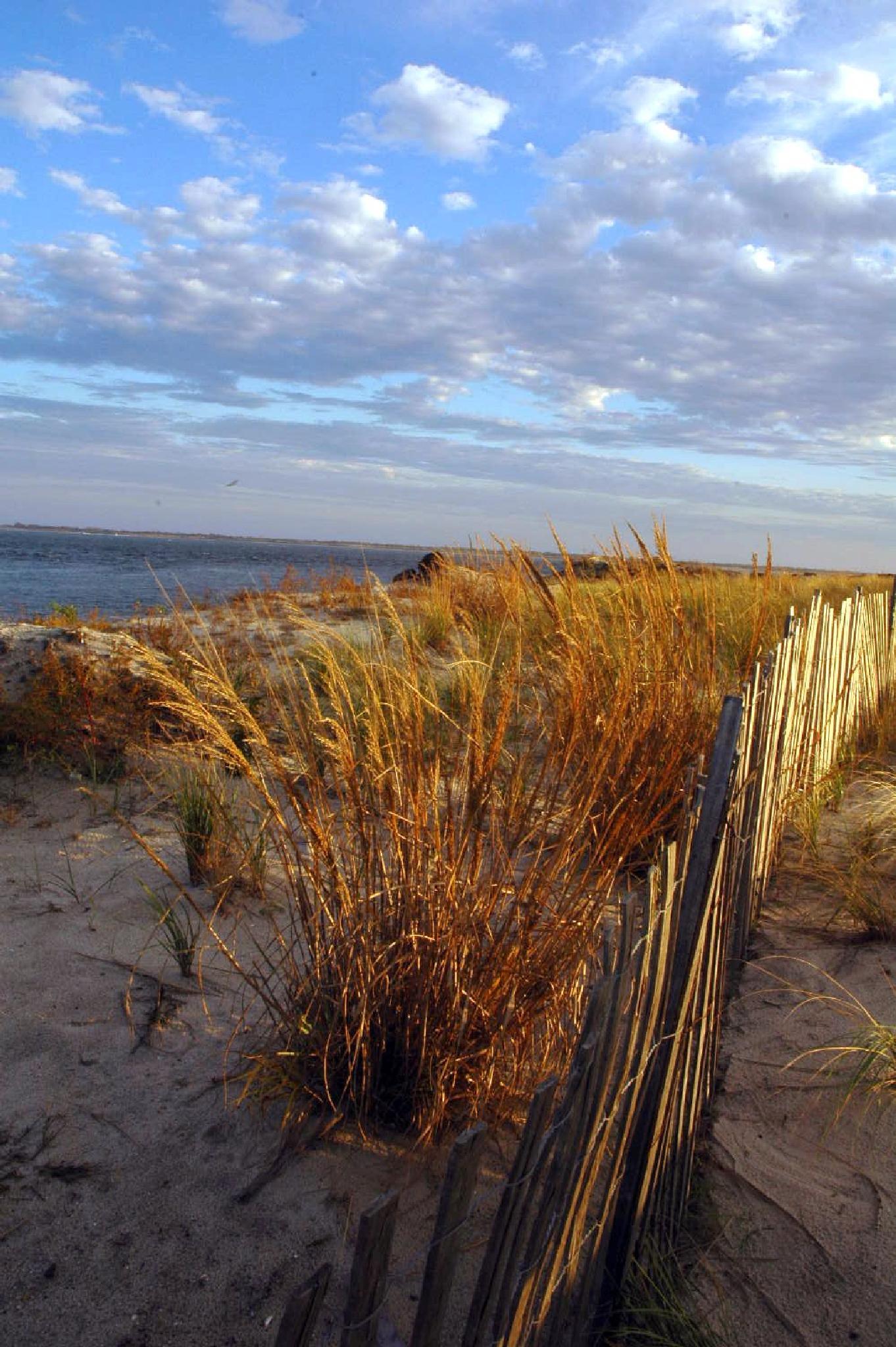 Long Island Shore by Ray Zirkle Photography