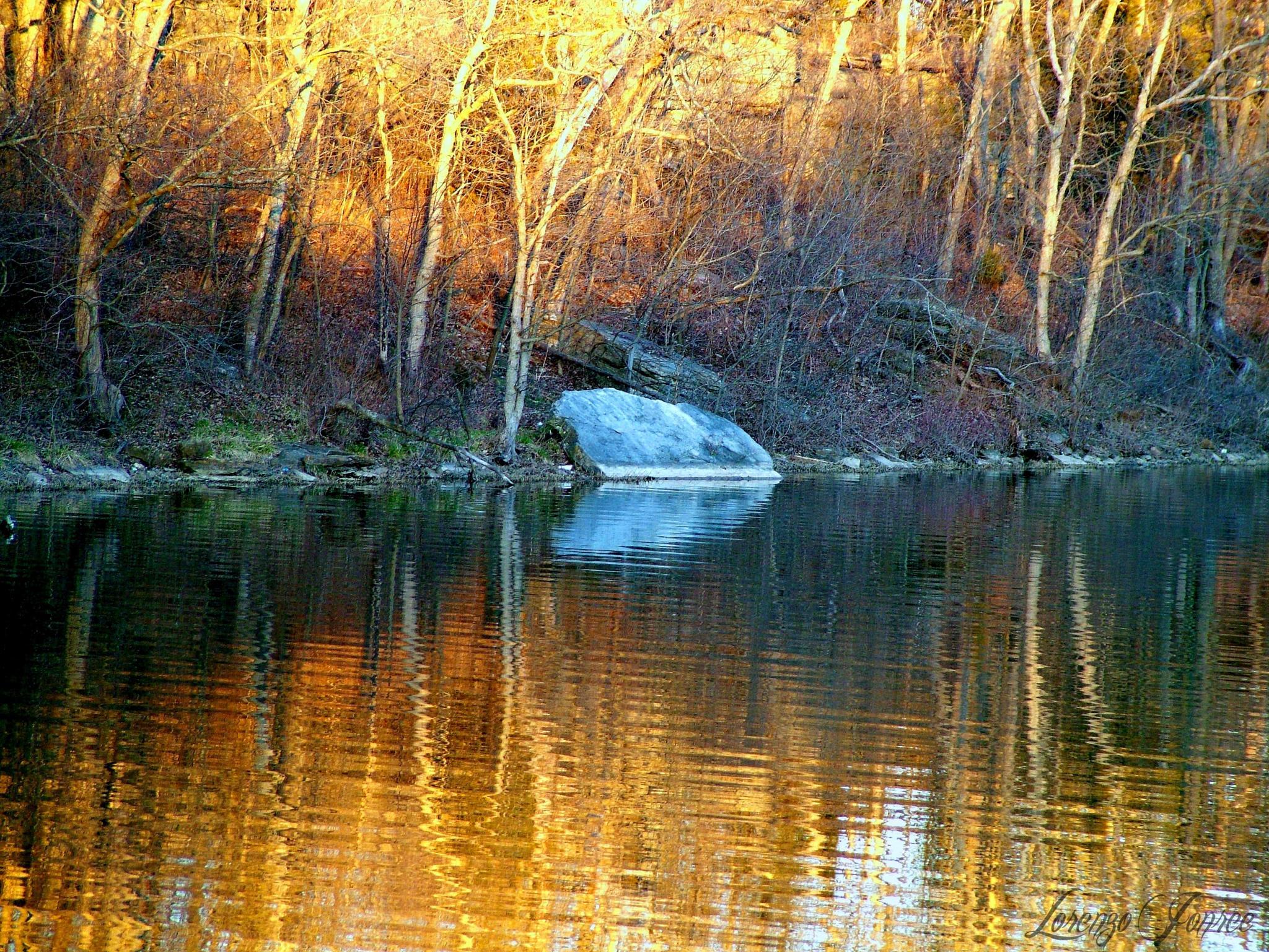 Late Winter Day Lighting On Lake  by Lorenzo (Larry) Jonree