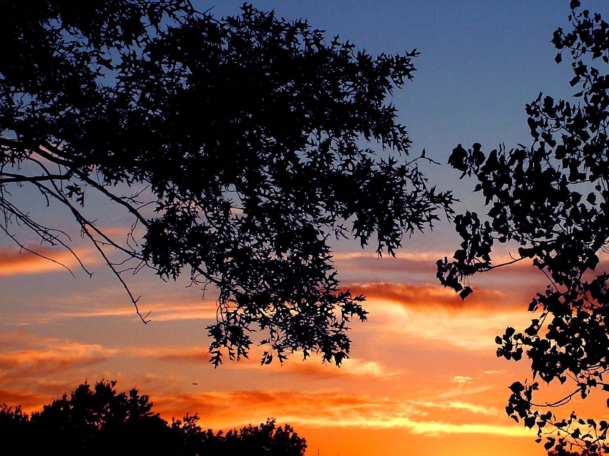 Rural Missouri Sunset by Lorenzo (Larry) Jonree