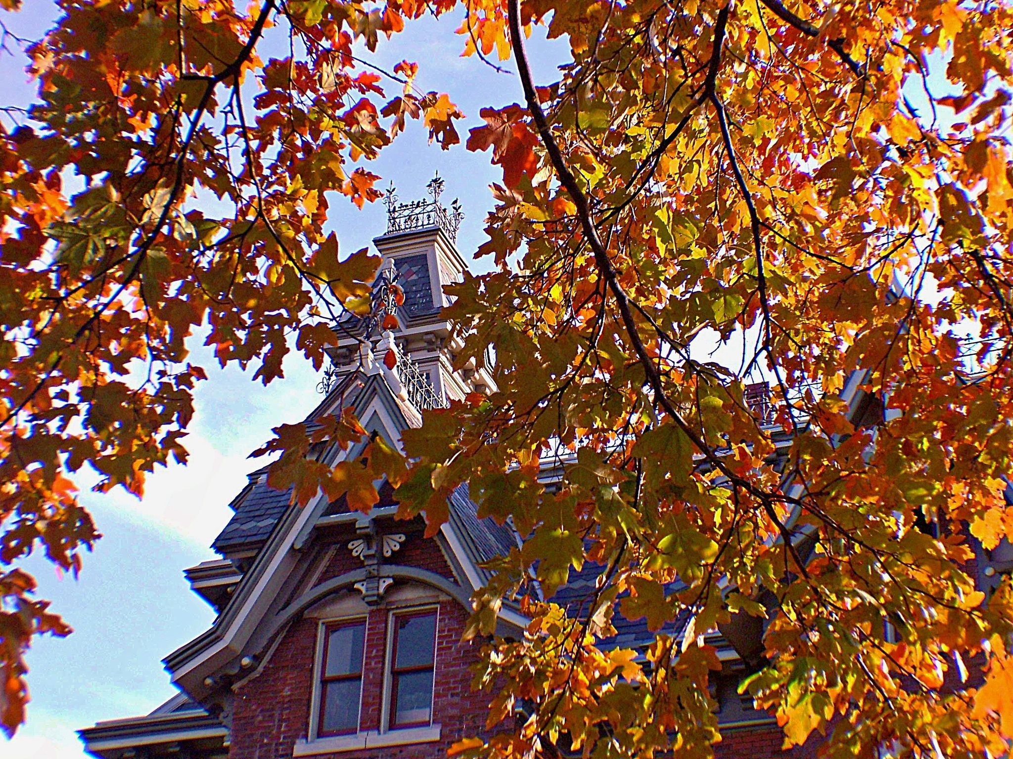 Vaile Victorian Mansion Incased In Fall Foliage  by Lorenzo (Larry) Jonree