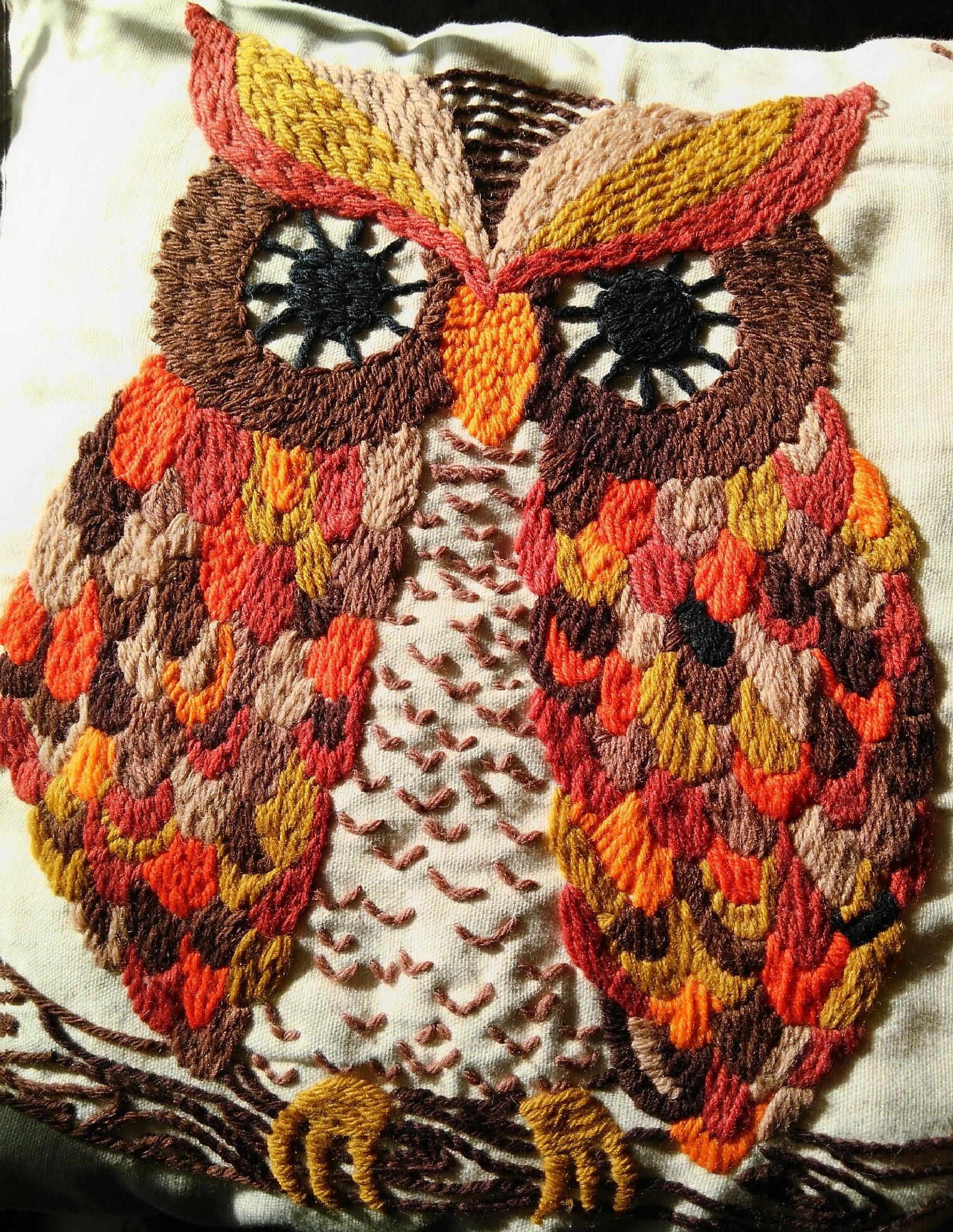 Macro The Big Owl by Lorenzo (Larry) Jonree