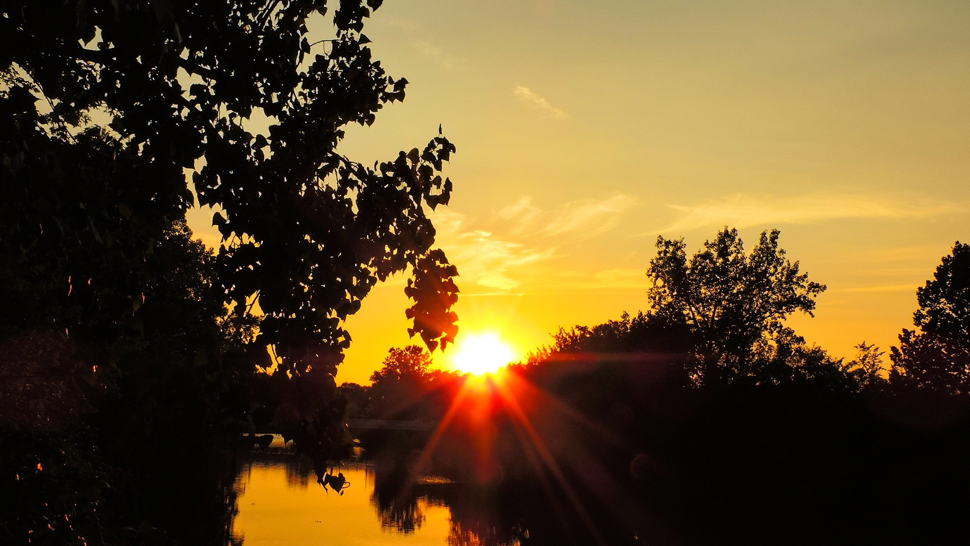 Golden Sunset by Jim Martin