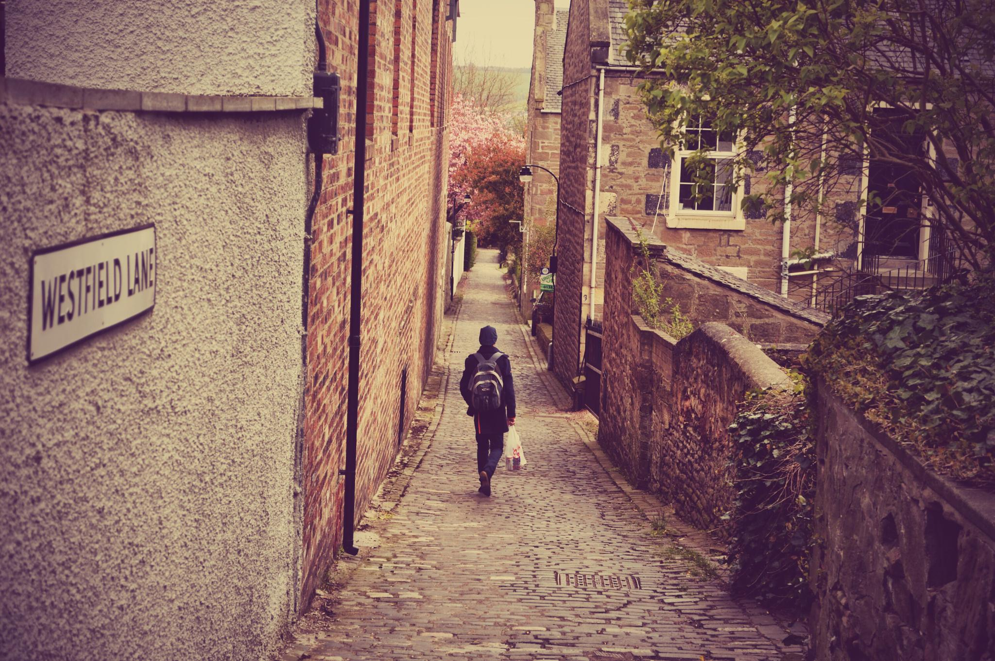 Westfield Lane by The PhotoGrabber