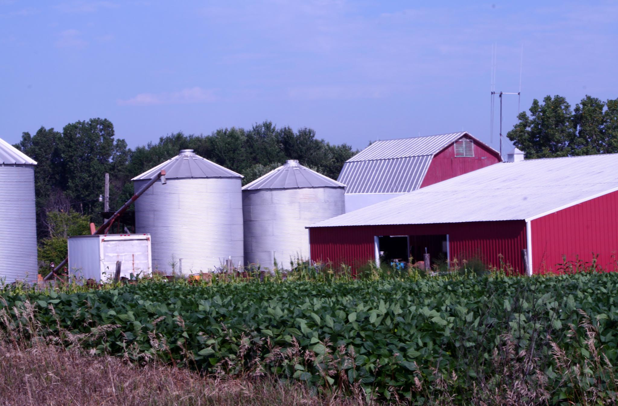 Farming by cindy.martin.7503