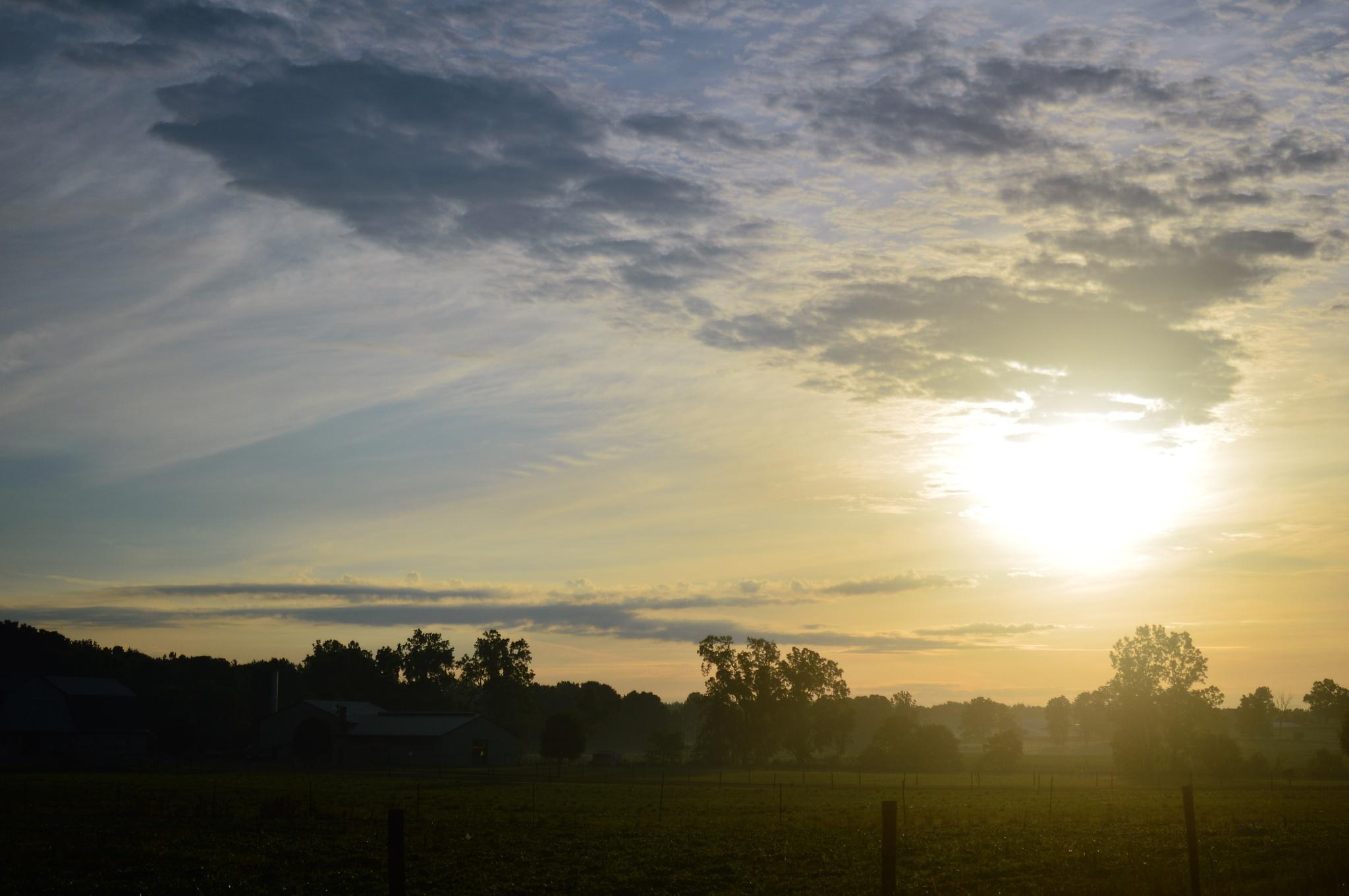 Morning Sun by cindy.martin.7503