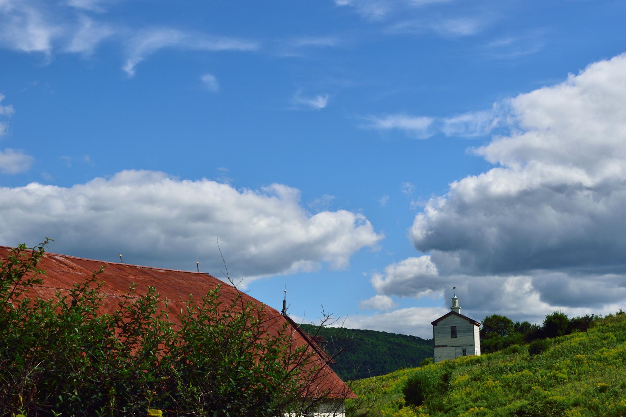 Vermont hillside by judy.gilland.7