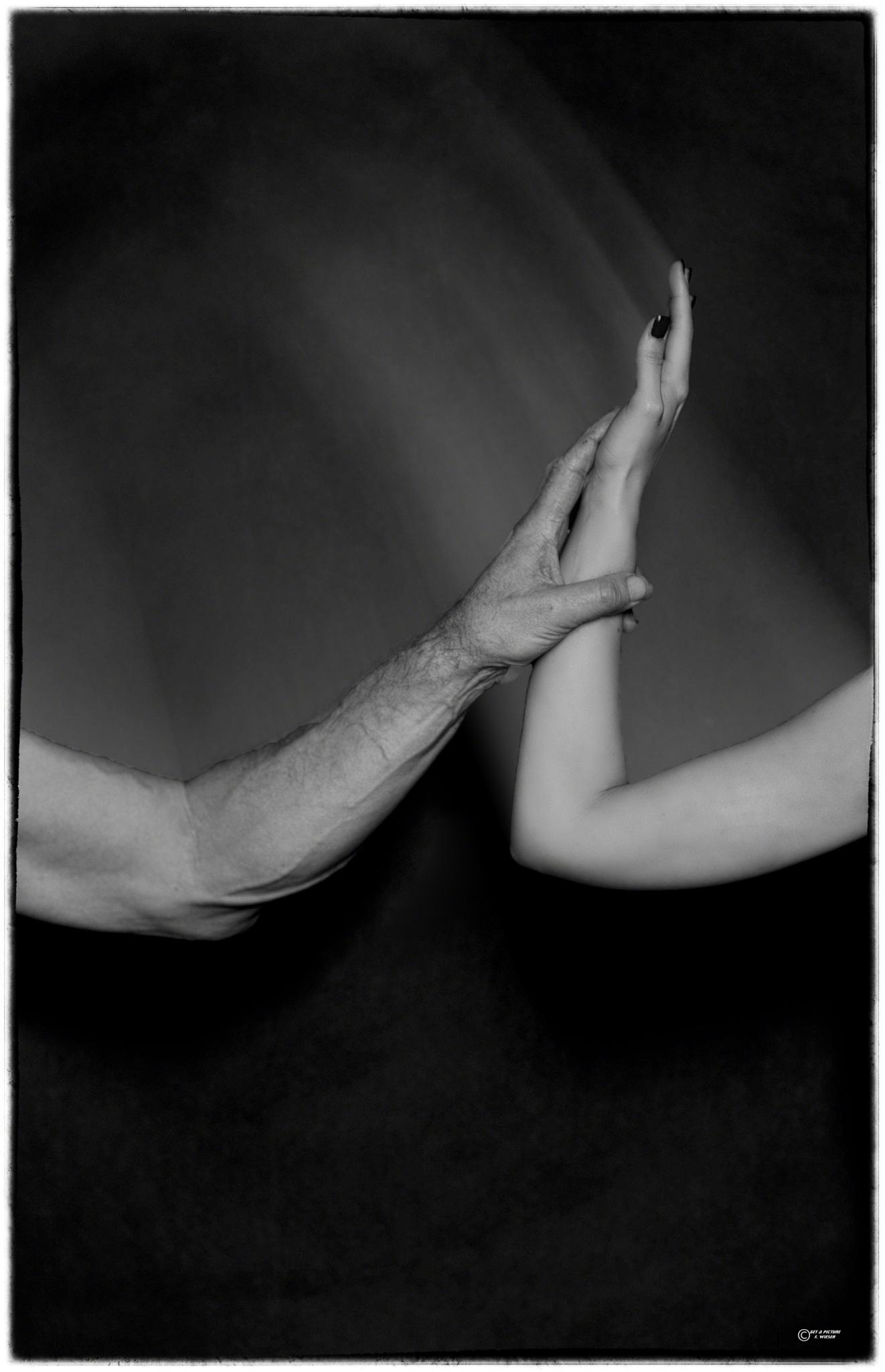 Touch by Friedrich Wieser
