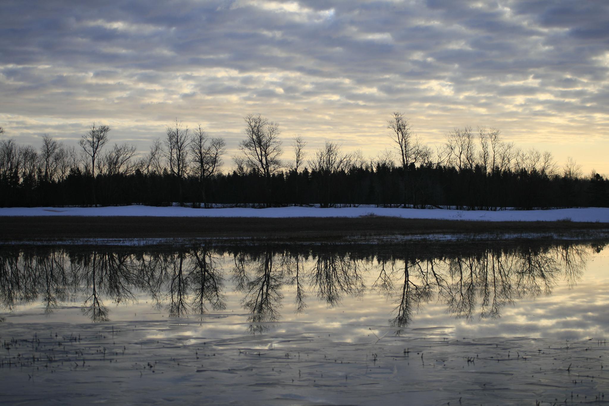 Reflections by al.macdonald.144