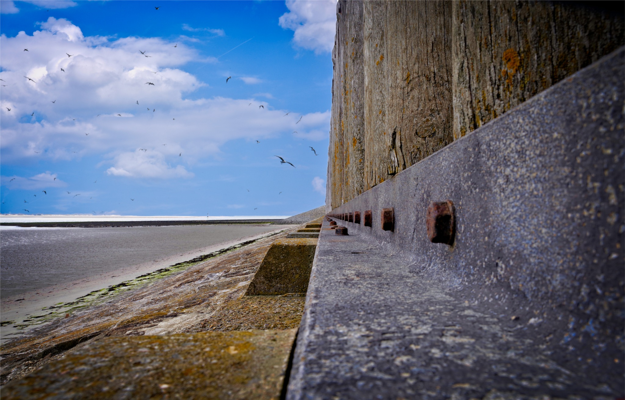 Along the wall by RIwanowski