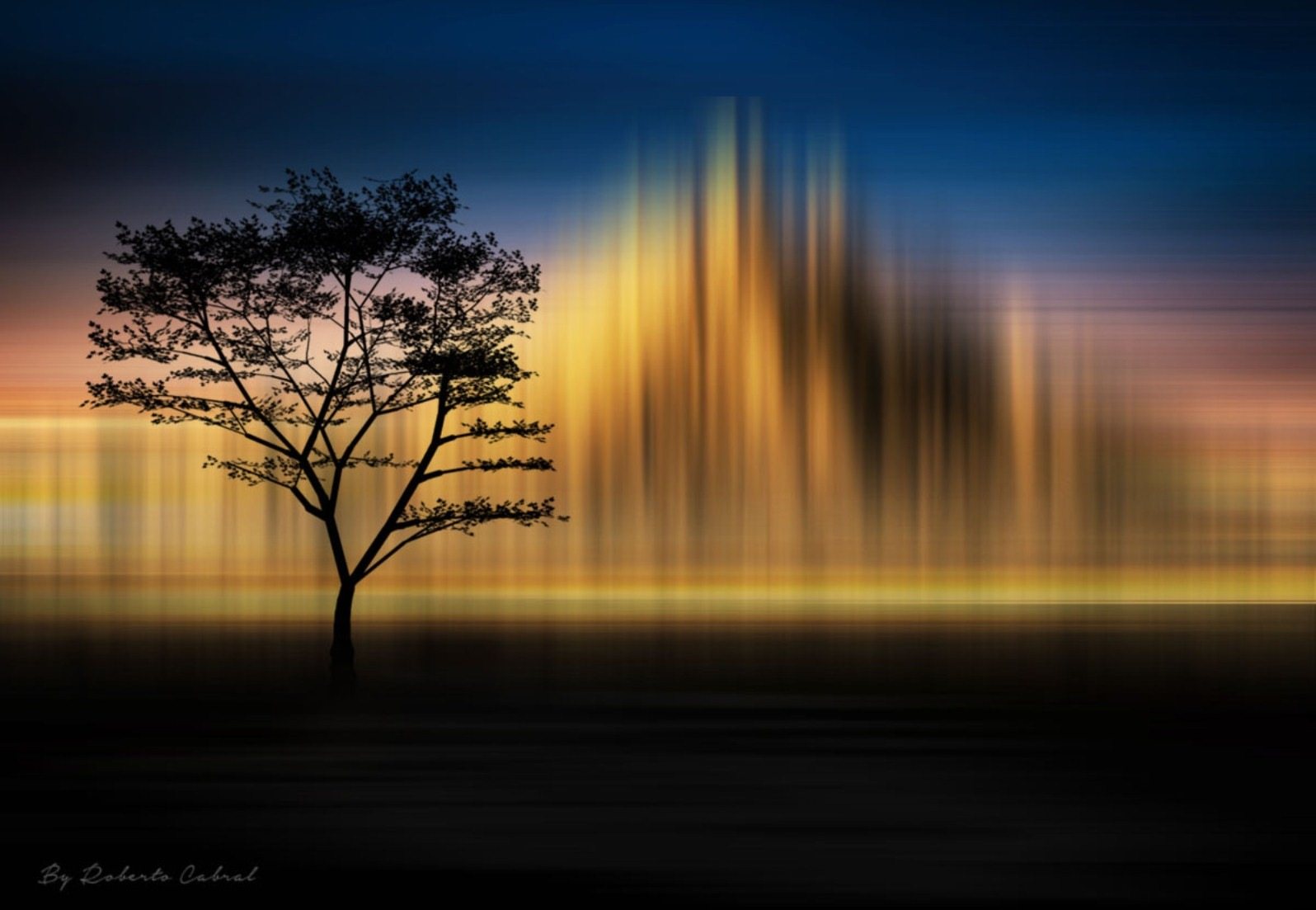 Incansable by Roberto Cabral │ Image & Photography
