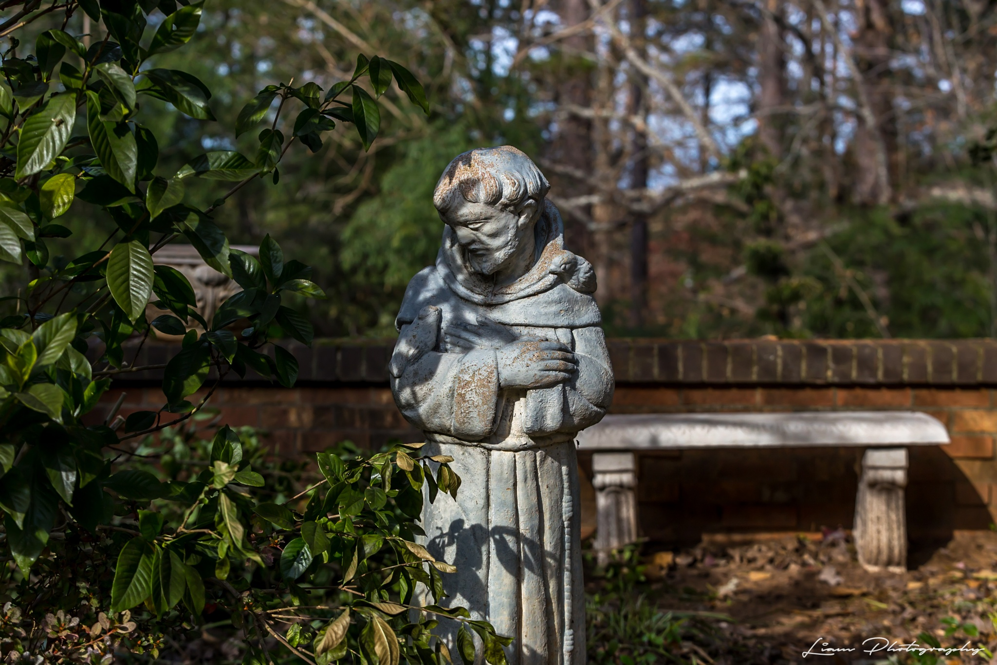 Monk Statue by Liam Photography