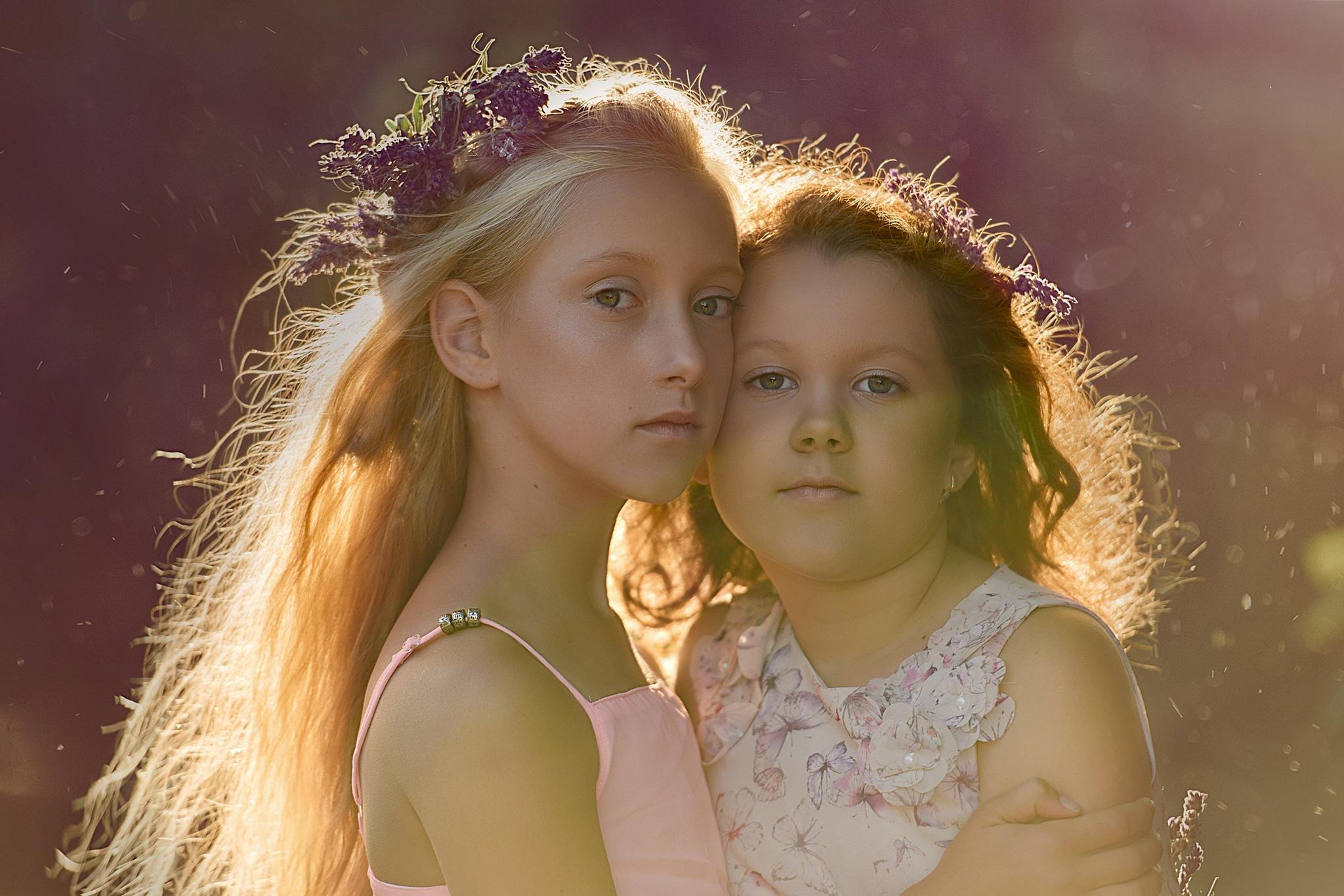 Lavender dream by anna.scigaj.7
