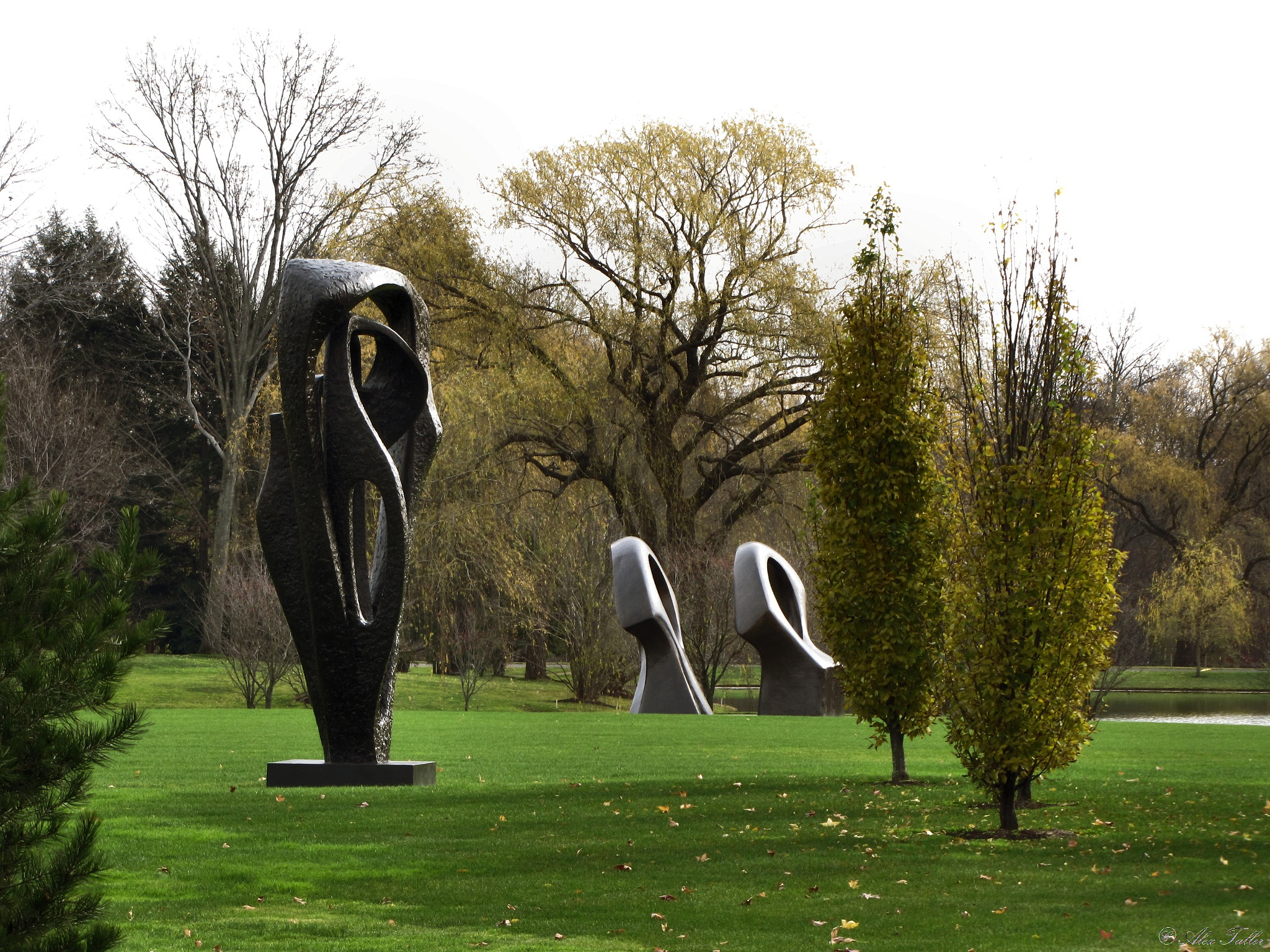 """""""Meridian"""" by Barbara Hepworth and """"Double Oval"""" by Henry Moore by +Alex Taller"""