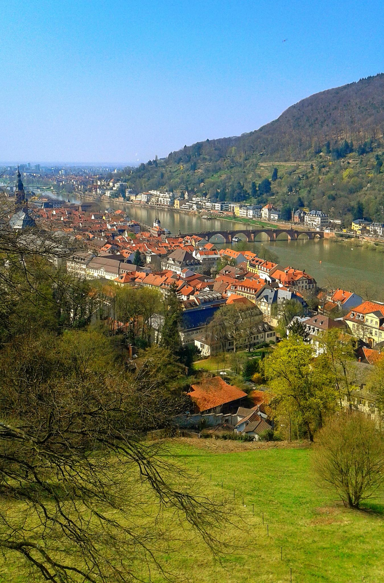 Photo in Cityscape #heidelberg #germany #schloss #phone camera