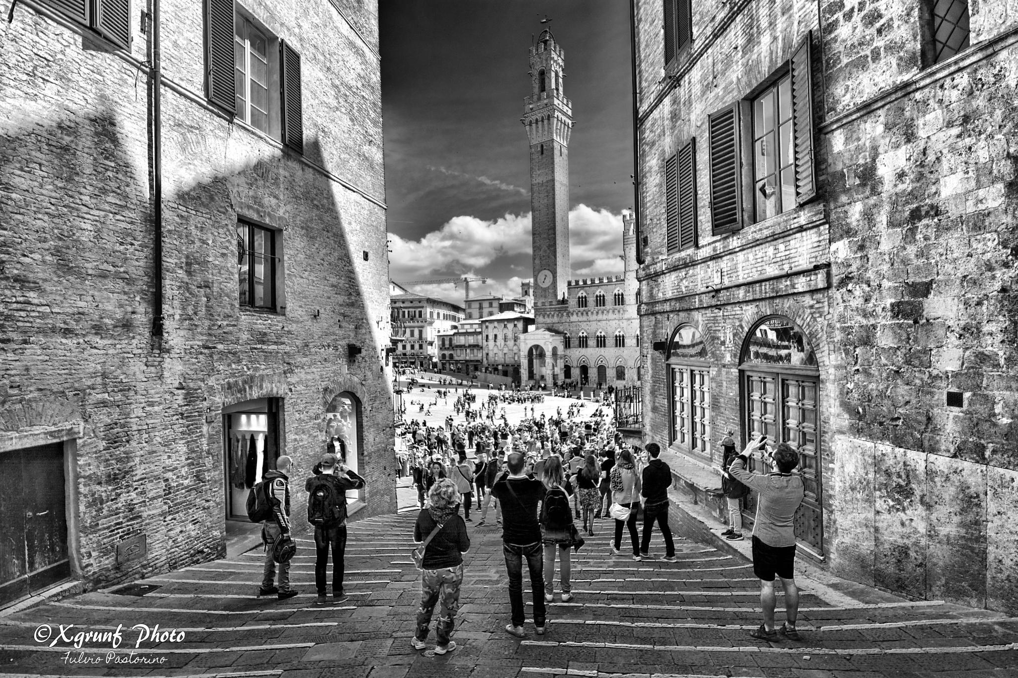 Siena - Italy by fulvio.pastorino