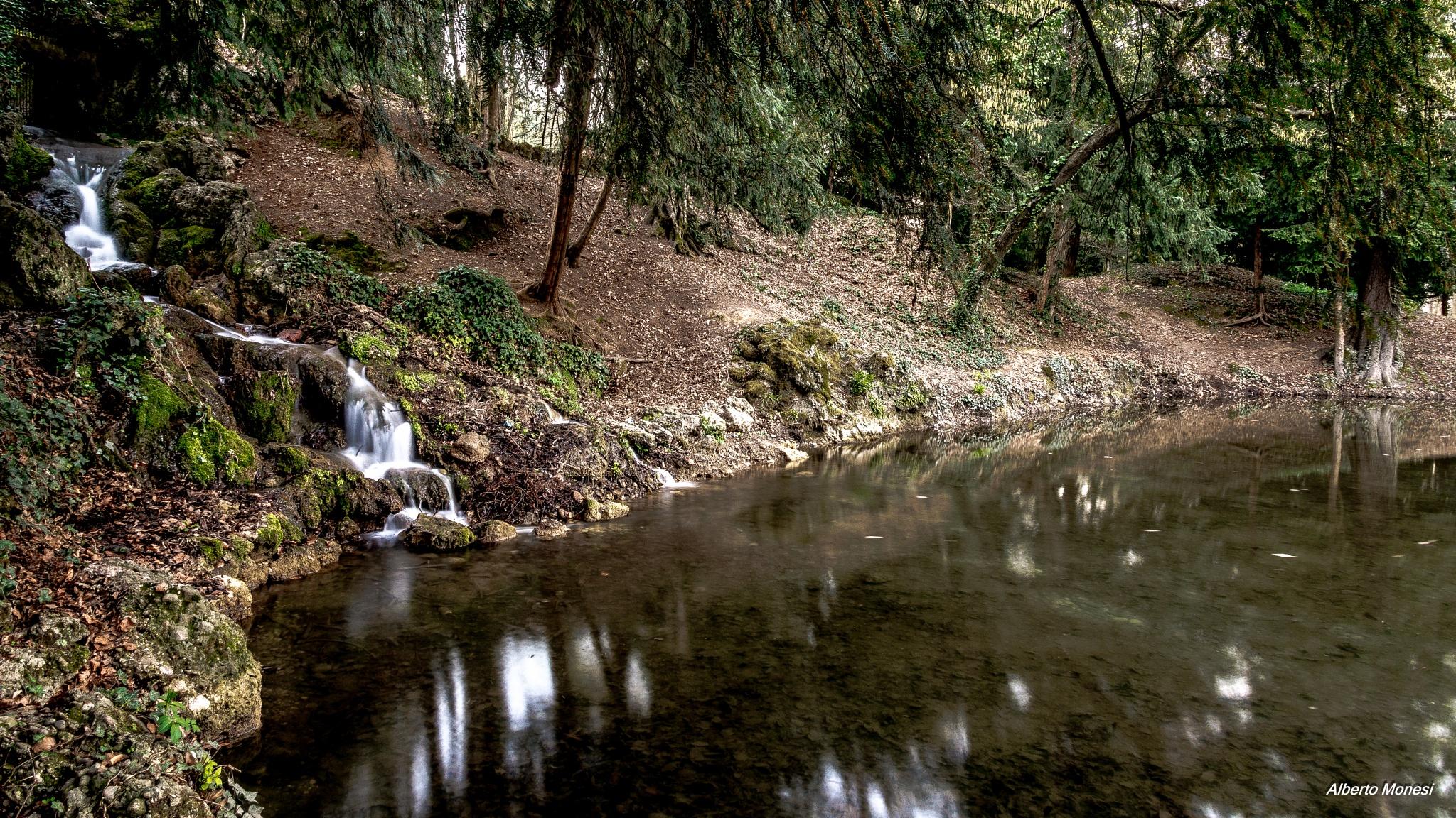 Photo in Nature #laghetto #fontana #fountain #cascatella #water #acqua #monza #villareale #parco