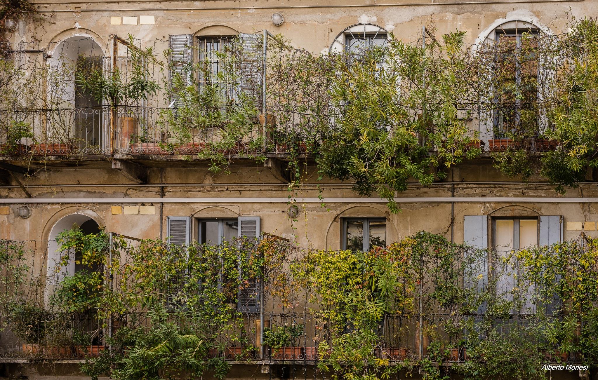 case di ringhiera by Alberto Monesi