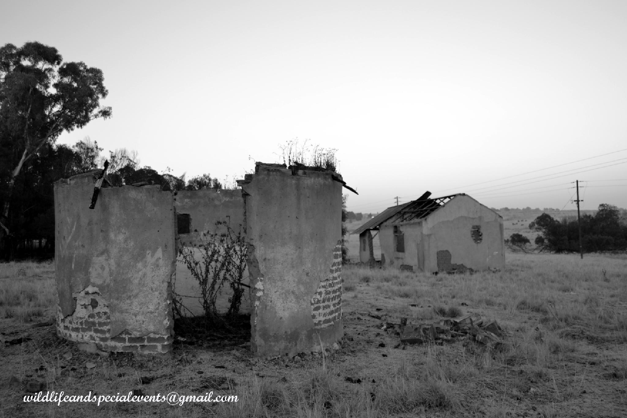 Lost farm by oosie